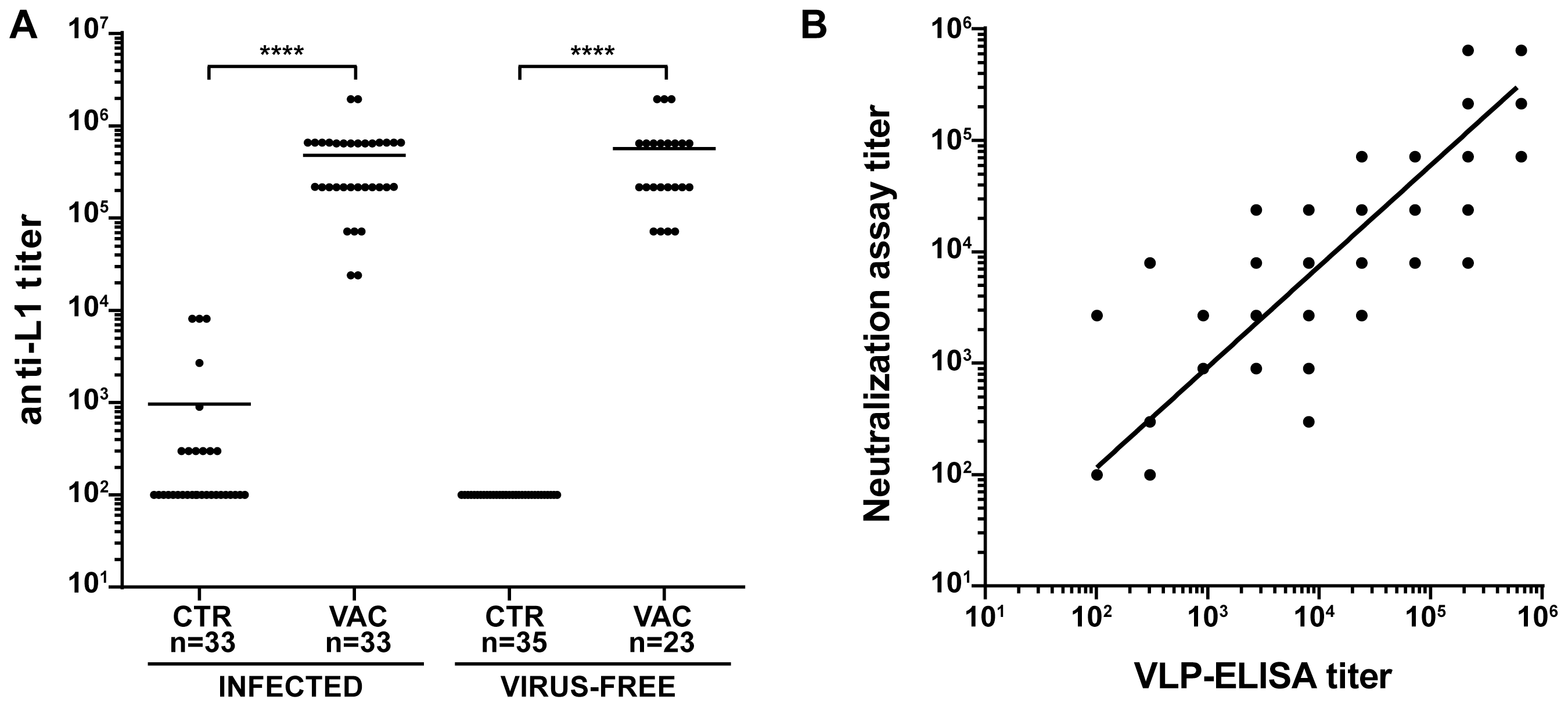 Humoral immune response to VLP vaccination.