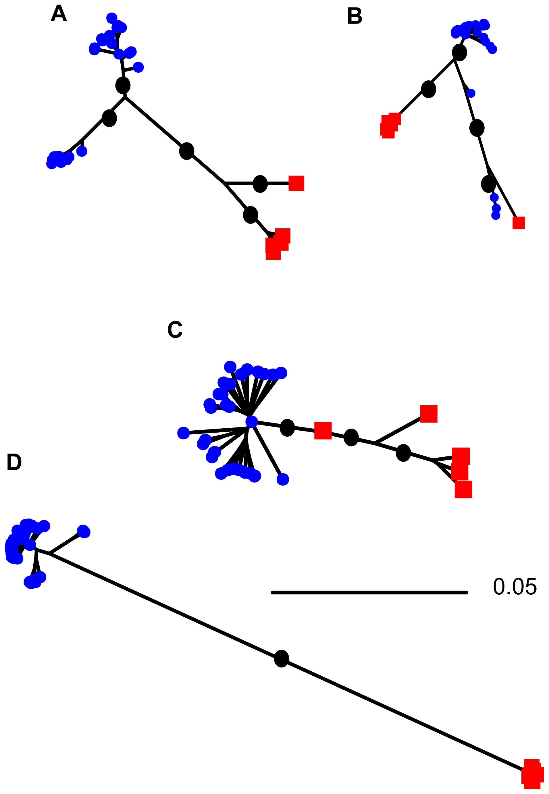 Neighbor-joining trees showing relationships among sequences sampled from <i>S. meliloti</i> (blue squares) and <i>S. medicae</i> (red circles) for genes showing evidence of horizontal gene transfer.