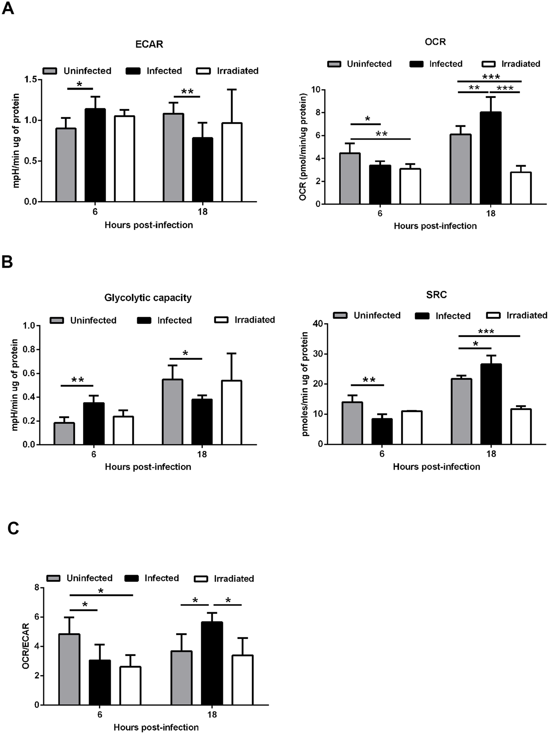 <i>Leishmania infantum</i> modulates host macrophages bioenergetic profile.