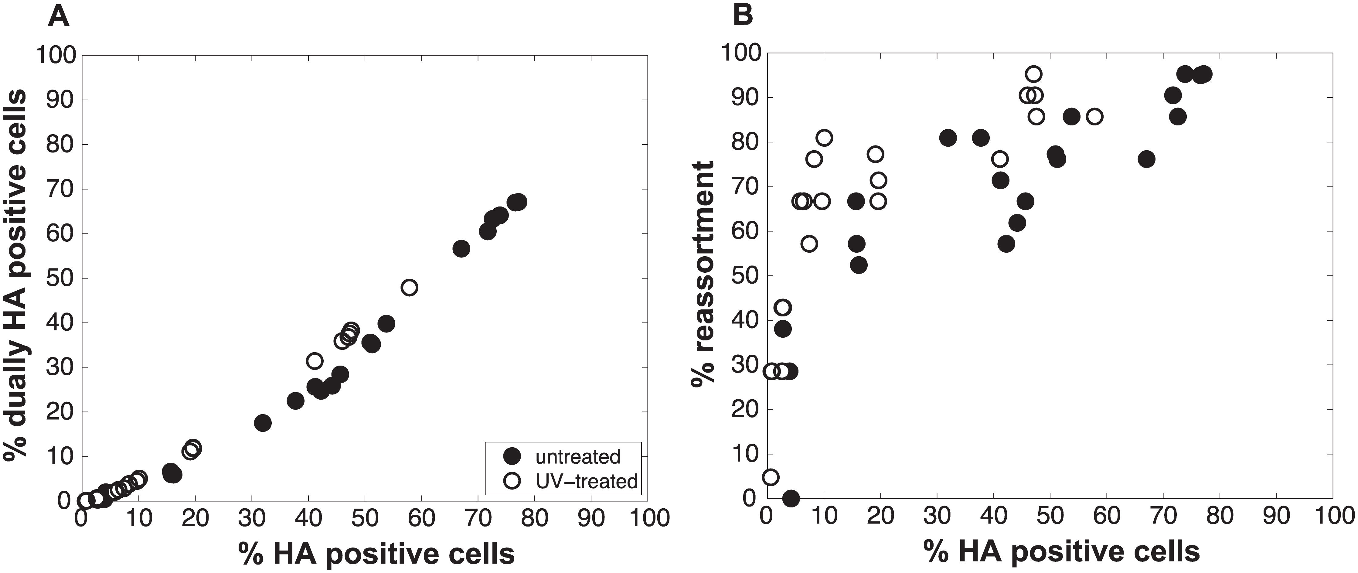 Increasing semi-infectious particle content by UV irradiation of virus stocks augments observed % reassortment.