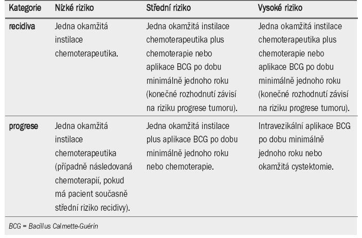 Doporučení pro léčbu pacientů s tumory TaT1 na základě rizika.