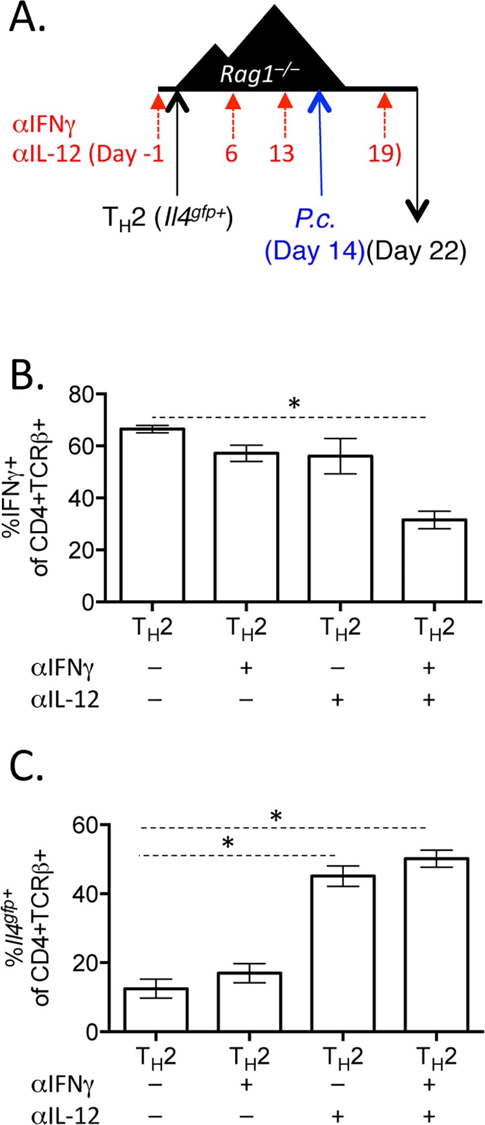 Blockade of IL-12 and IFNγ prevents optimal IFNγ production by Th2 cells.
