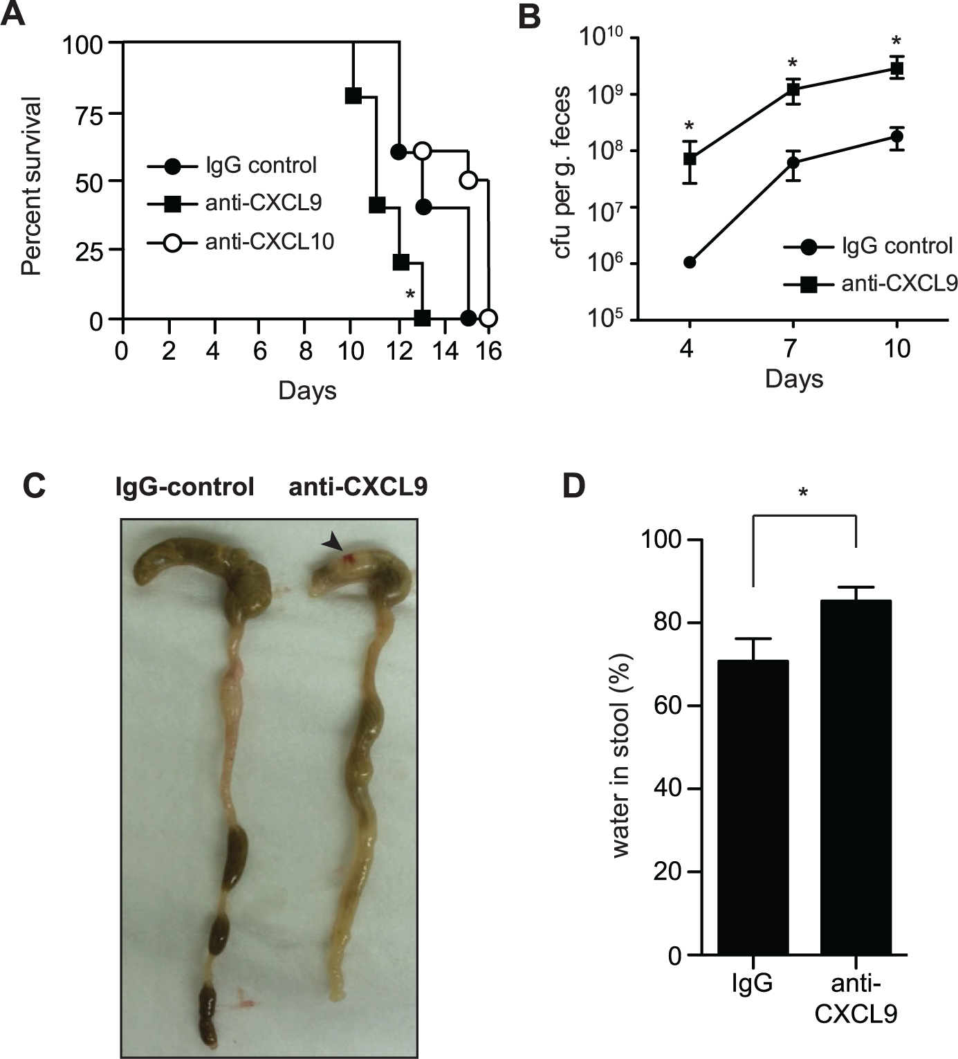 Loss of CXCL9 results in increased <i>C</i>. <i>rodentium</i> burden and worsened host outcome.