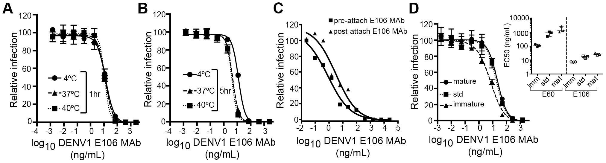 Functional characteristics of neutralization by E106 MAb.