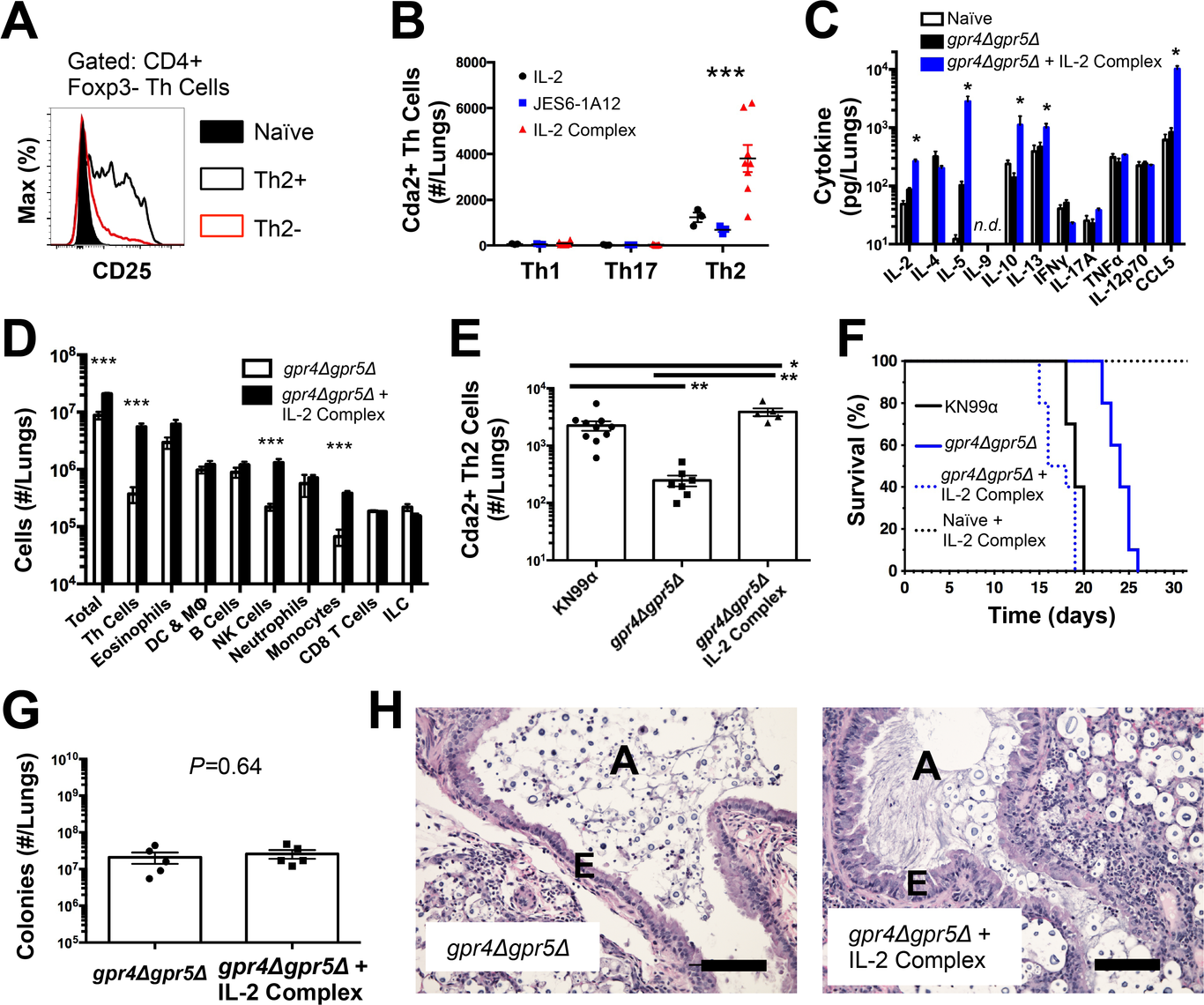 IL-2 Complexes Augment Type-2 Helper T Cells and Enhance Fungal Disease.