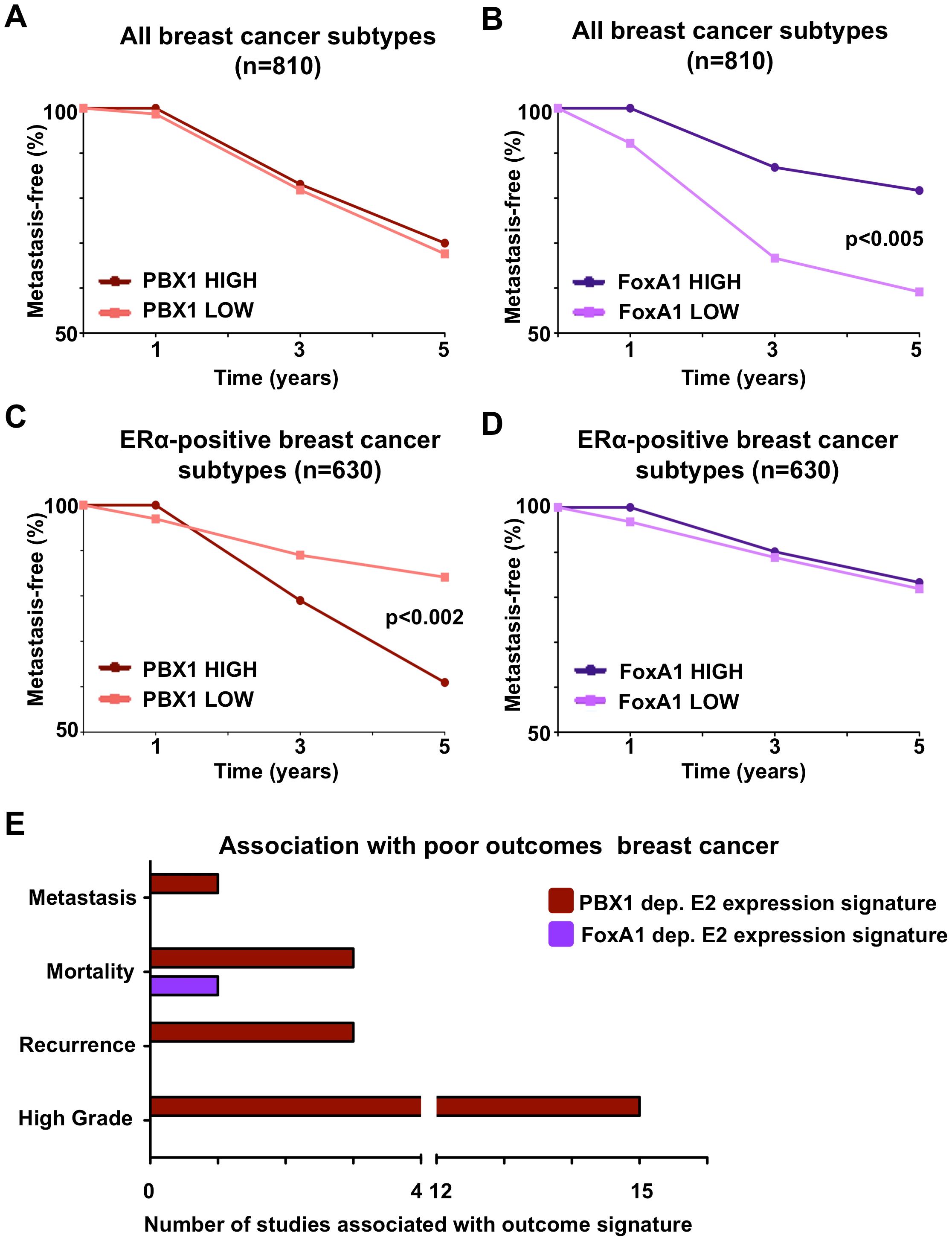 PBX1 is a novel prognostic marker for ERα positive breast cancers.