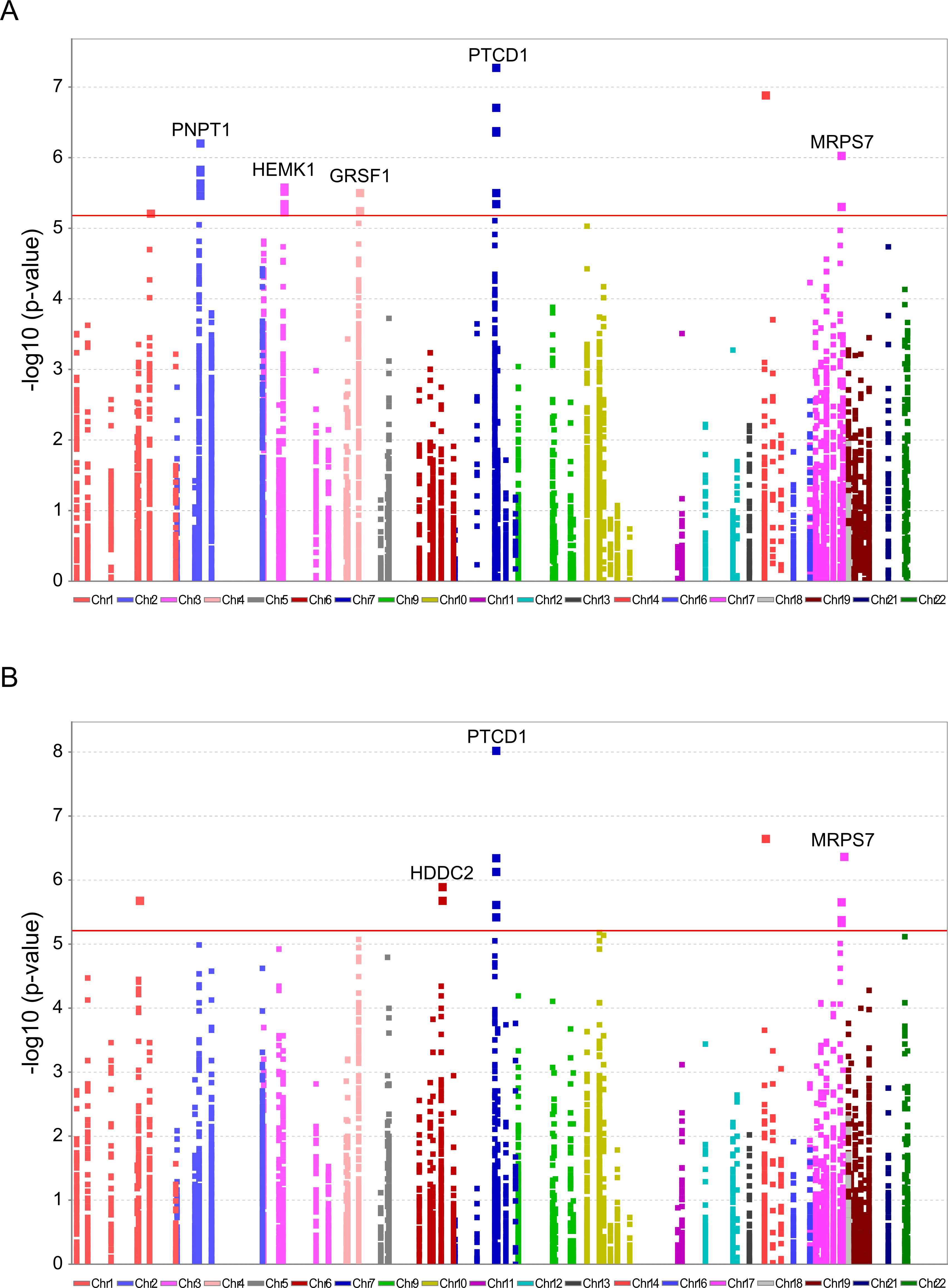 Significant association of nDNA SNPs with African-Caucasian differences in mtDNA gene expression.