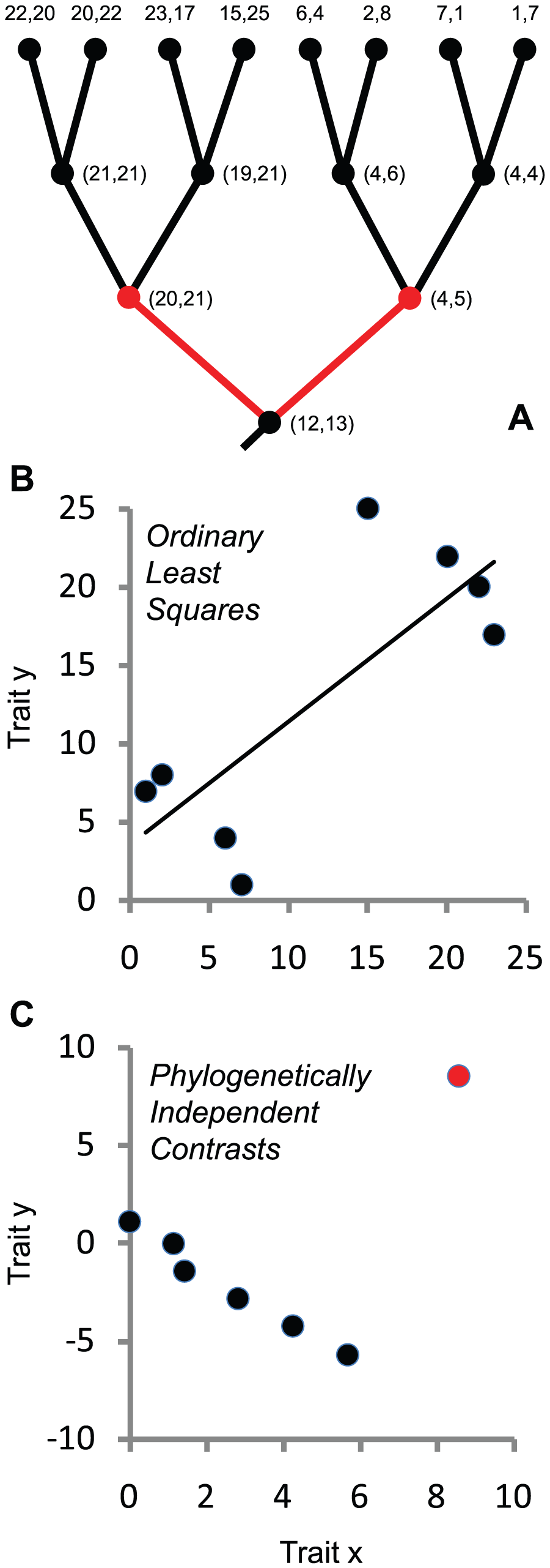 Ignoring phylogenetic history can lead to incorrect conclusions about the nature of evolutionary associations between traits.