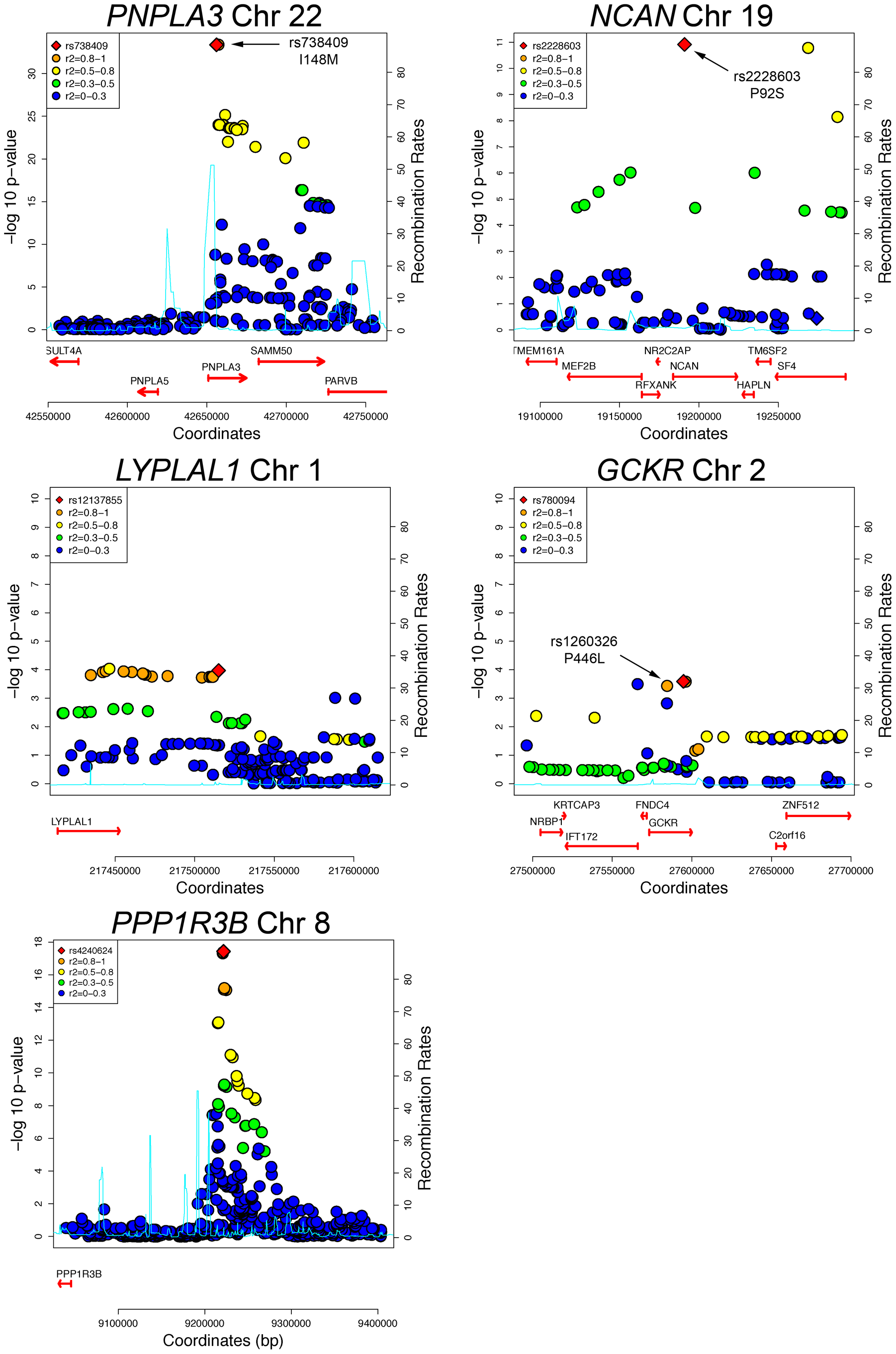 Regional plots of genome-wide significant or replicating loci of association in GOLD.