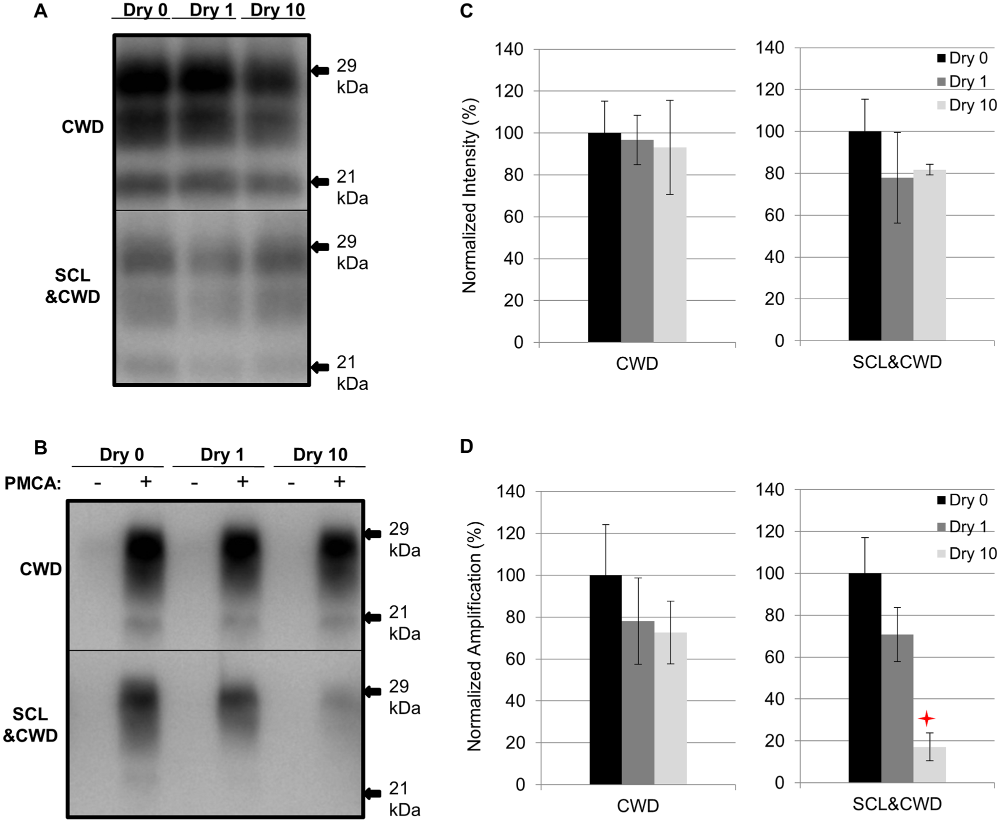 Influence of repeated cycles of drying and wetting on proteinase K resistance and amplification efficiency of elk CWD.