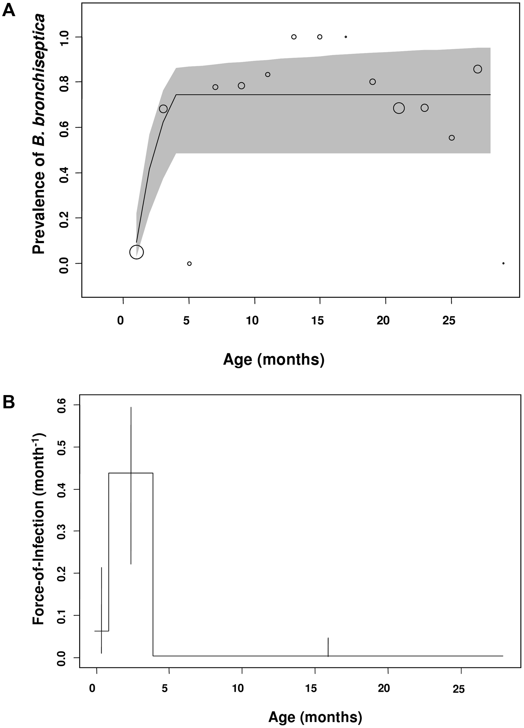 Estimated and observed prevalence of <i>B. bronchiseptica</i> and the force-of-infection estimated in the commercial rabbitry.