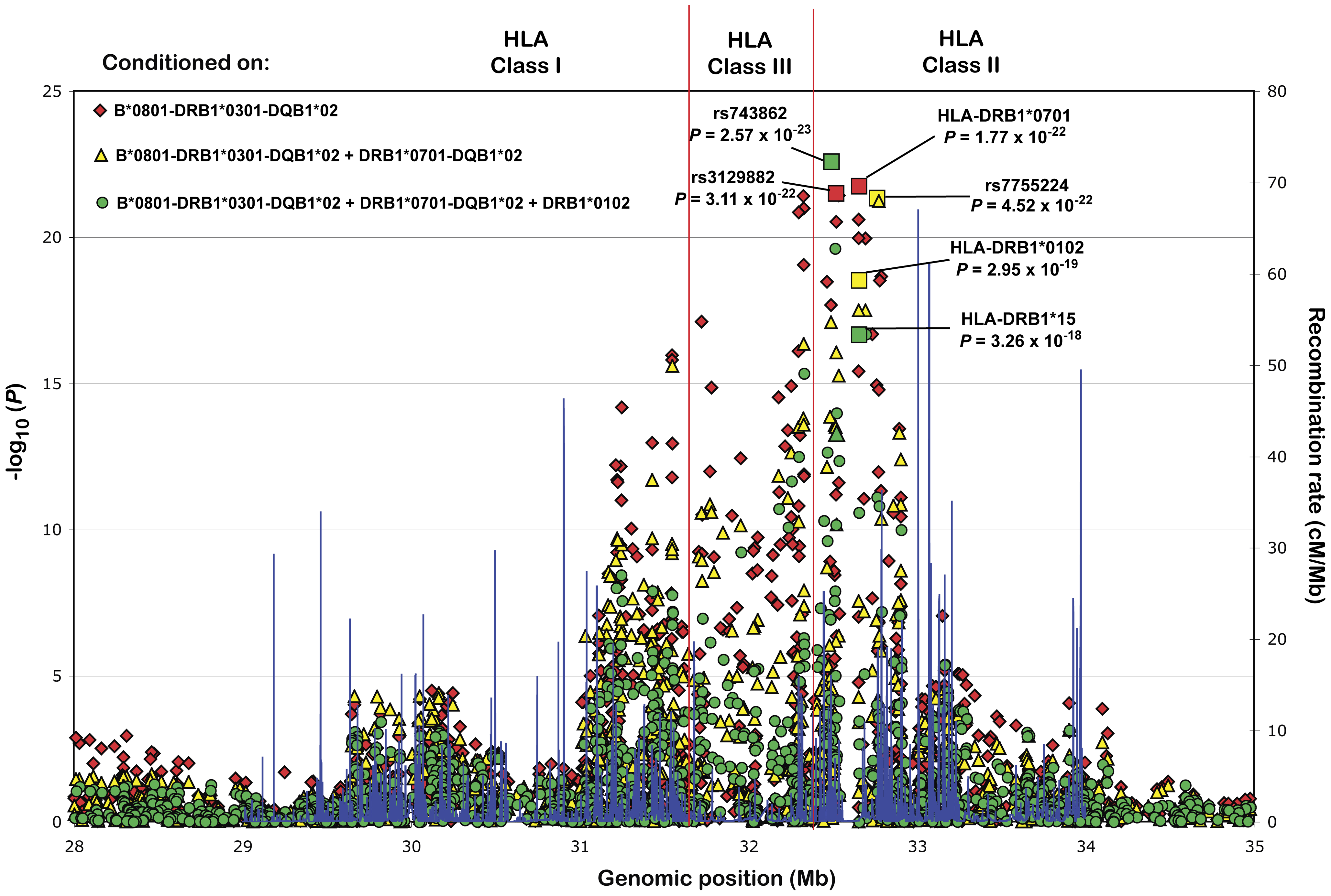 Secondary association signals in the HLA locus.