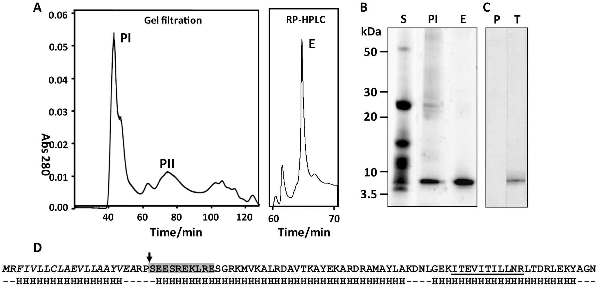 Identification and characterisation of native FhHDM-1.