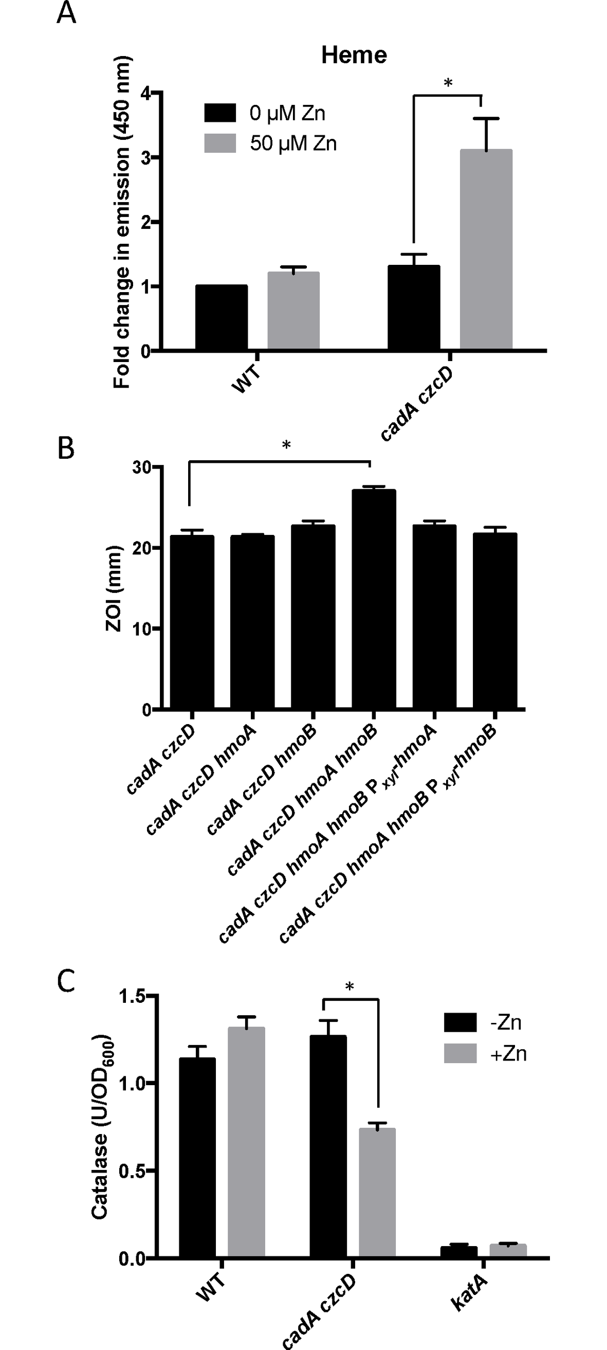 Zn(II) intoxication leads to intracellular heme accumulation.