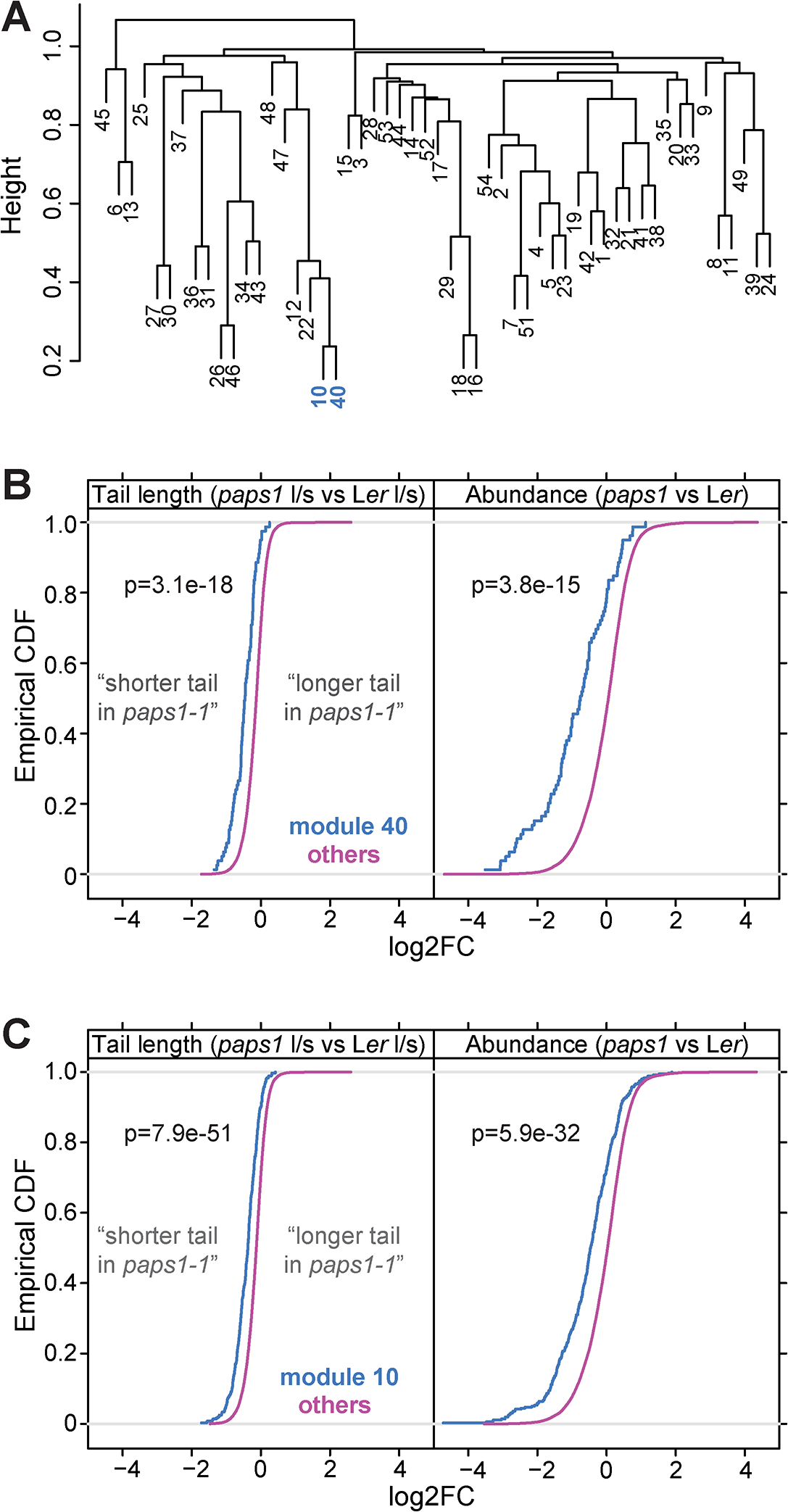 Genes coexpressed with <i>PAPS1</i> are strongly affected in <i>paps1</i> mutants.