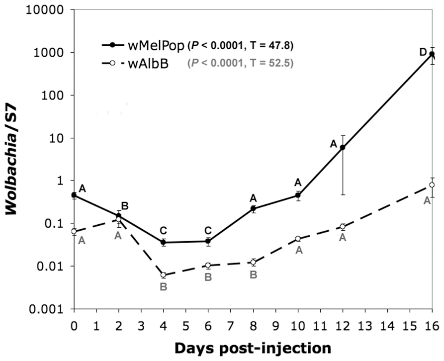 Changes in titer of wMelPop and wAlbB in <i>An. gambiae</i> after microinjection, assessed by quantitative PCR.
