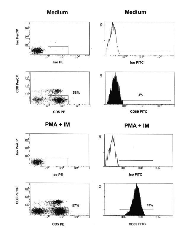 Určení populace aktivovaných CD4+ (CD5+CD8-) T-lymfocytů 2a) nestimulované buňky (medium); 2b) stimulované buňky (PMA + IM) Fig. 2. Identification of activated CD4+ (CD5+CD8-) T cells 2a) Non-activated cells (Medium) 2b) Activated cells (PMA + IM)