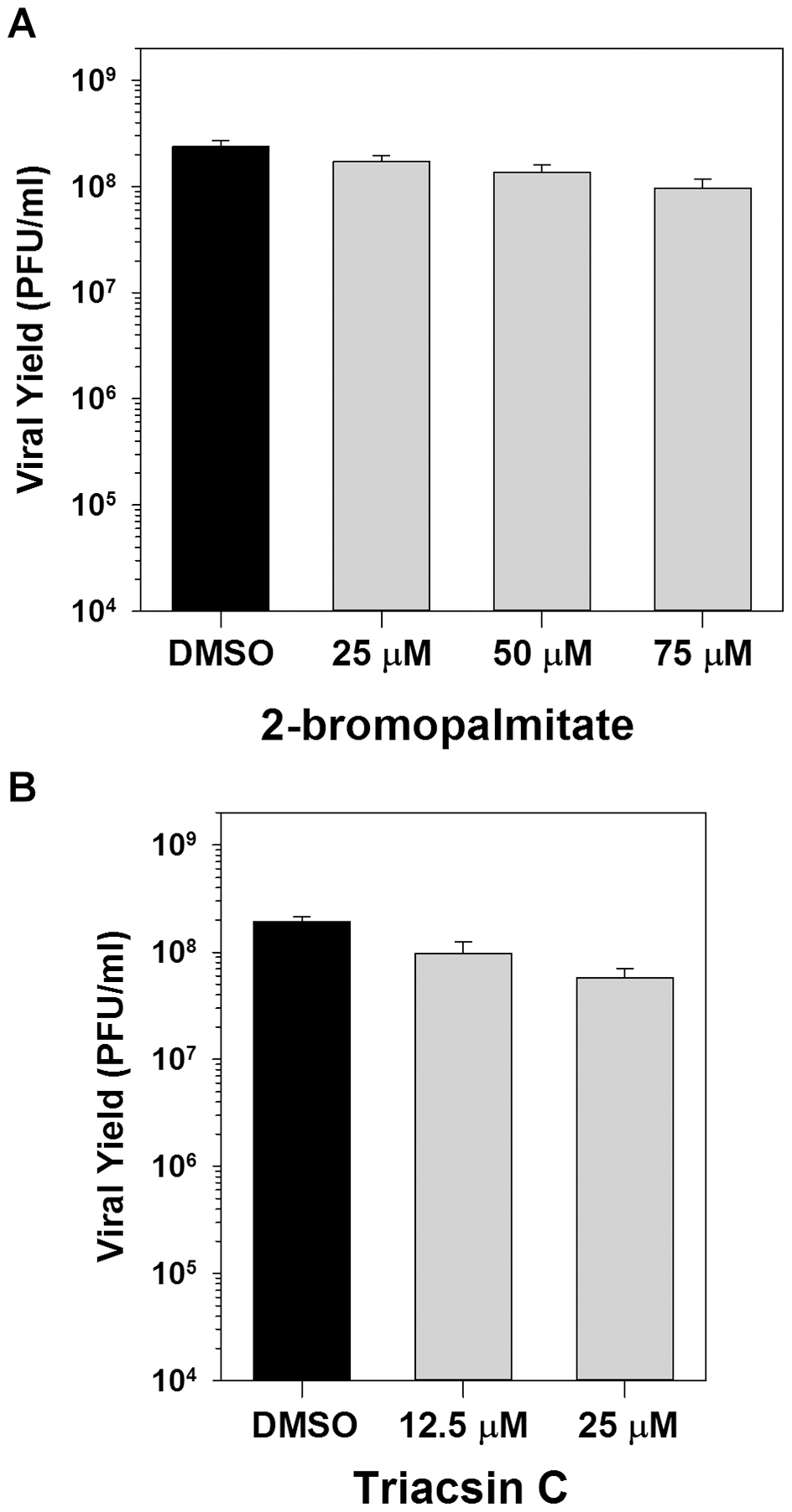 Inhibition of palmitoylation or phospholipid synthesis has no impact on viral replication.