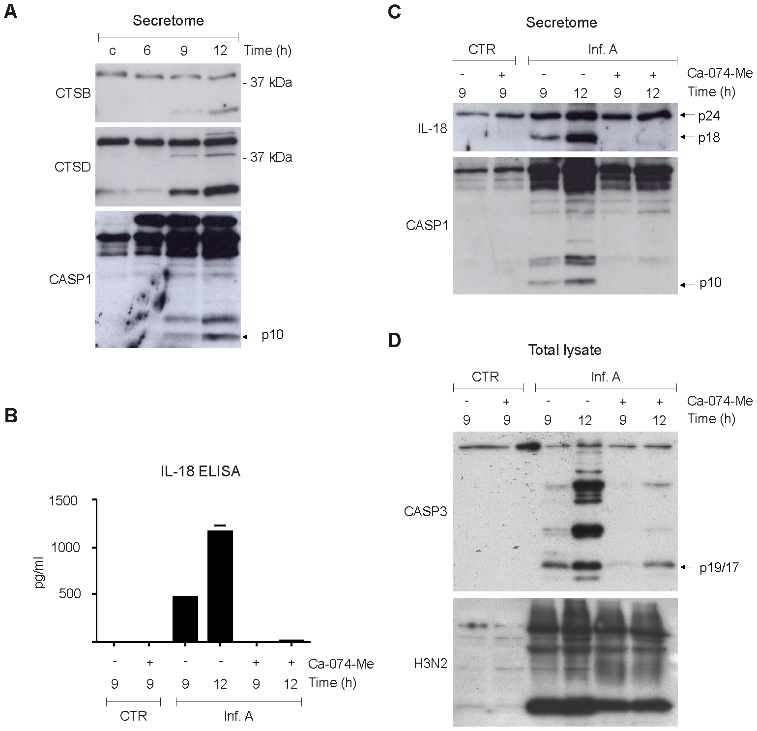 Cathepsins are essential for influenza A virus-induced inflammasome activation.