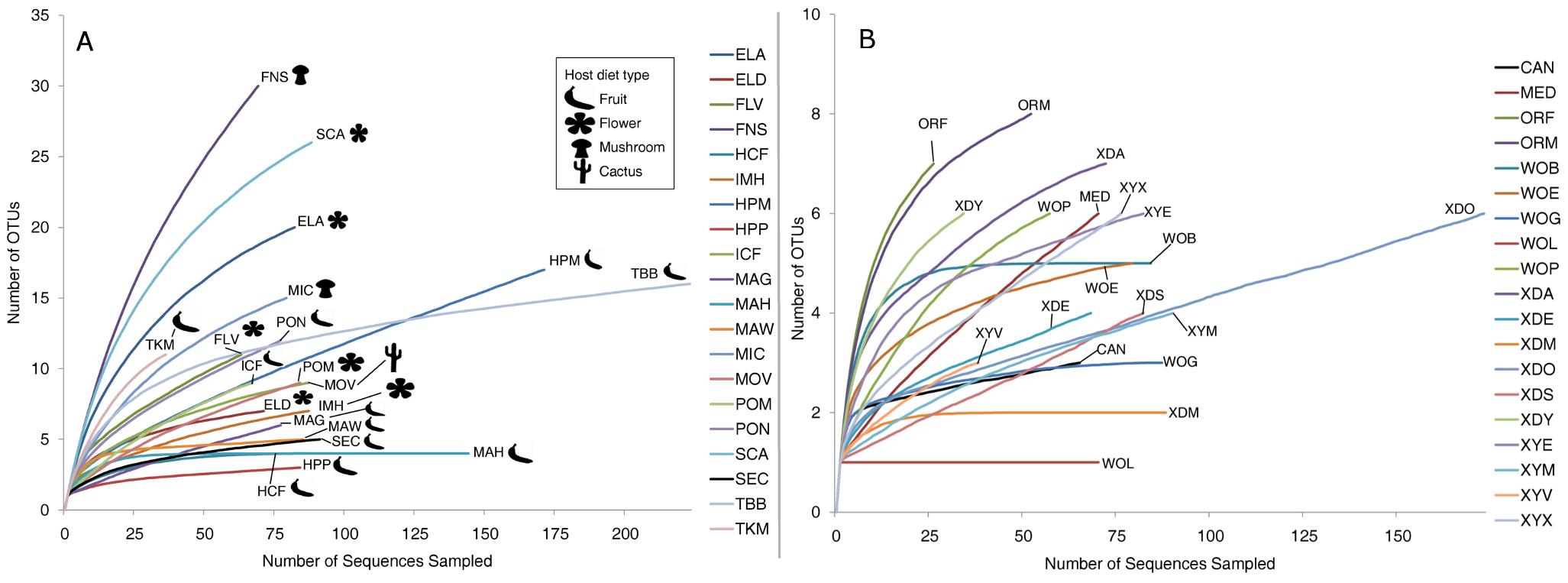 Rarefaction analysis of observed richness within <i>Drosophila</i>.