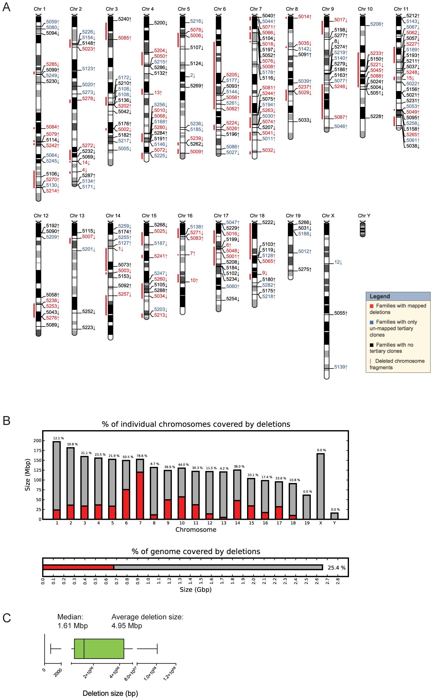 Molecular characterization of DelES clones.