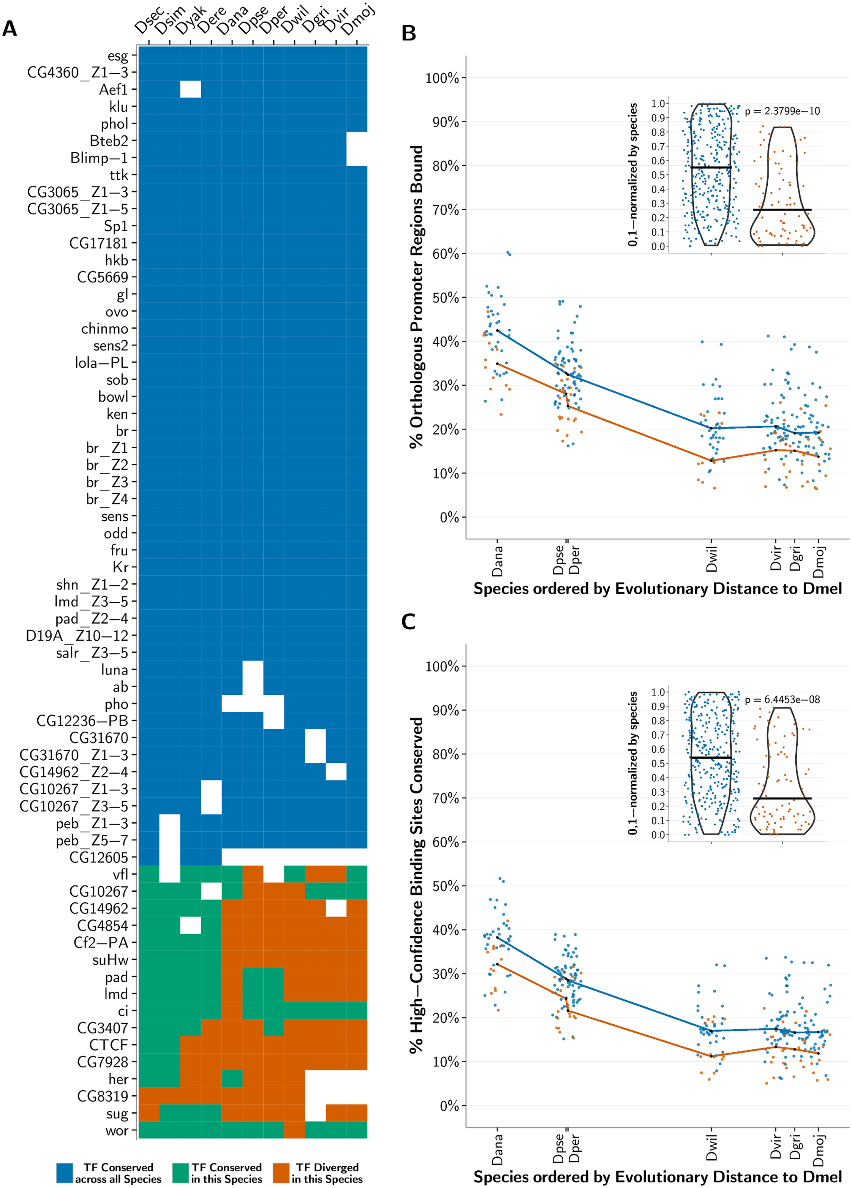 Conservation of predicted binding motifs for experimentally derived PWMs across species.