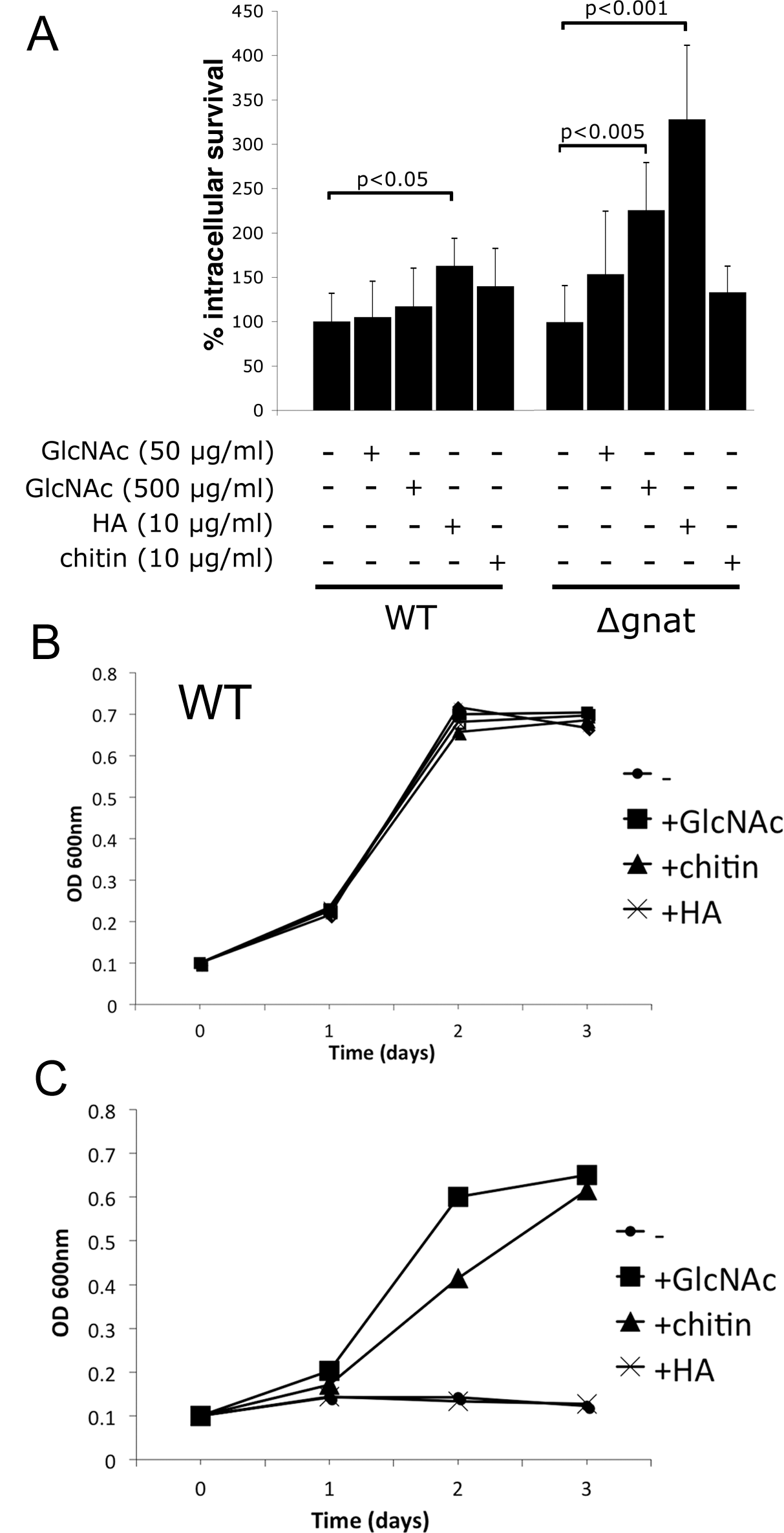 Intracellular ∆<i>gnat</i> parasites are rescued by exogenous GlcNAc sources.