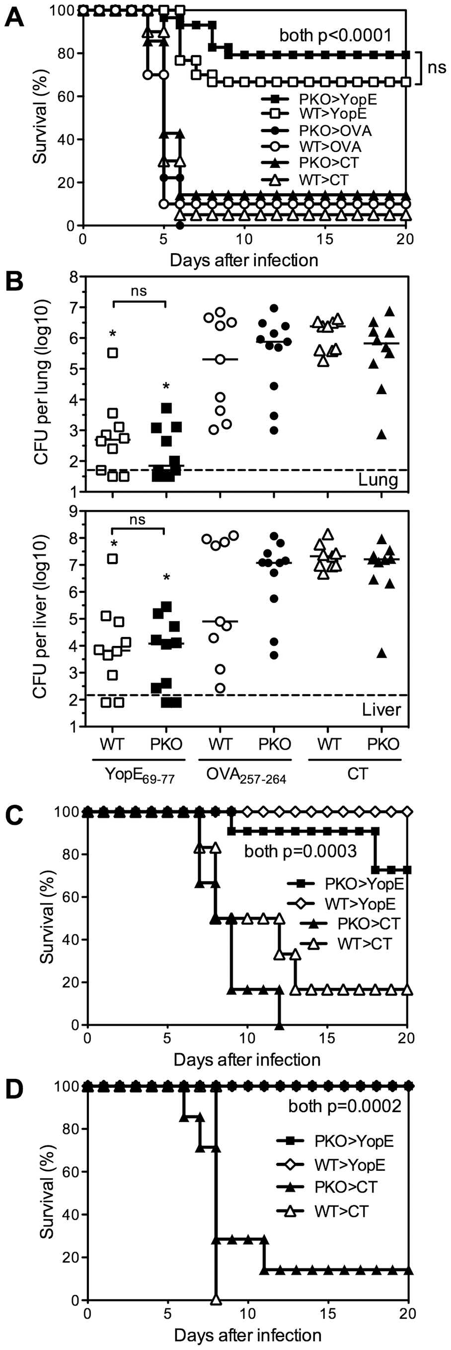Perforin is dispensable for YopE<sub>69–77</sub>–specific CD8 T cell-mediated protection against <i>Y. pestis</i> and <i>Y. pseudotuberculosis</i>.