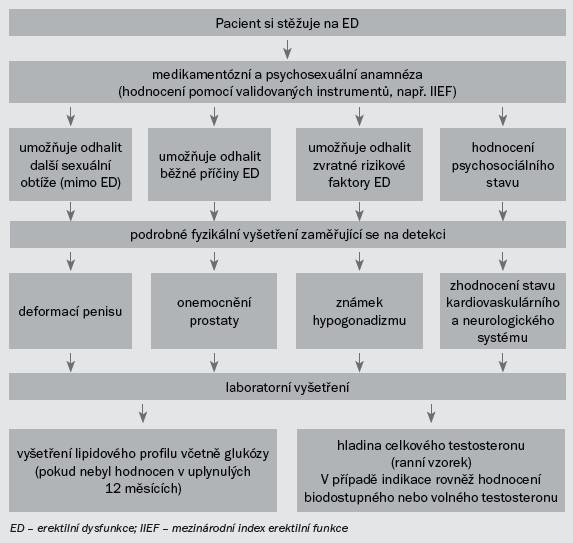 Schéma 1. Minimální diagnostický postup (základní postup) při vyšetřování pacientů s ED.