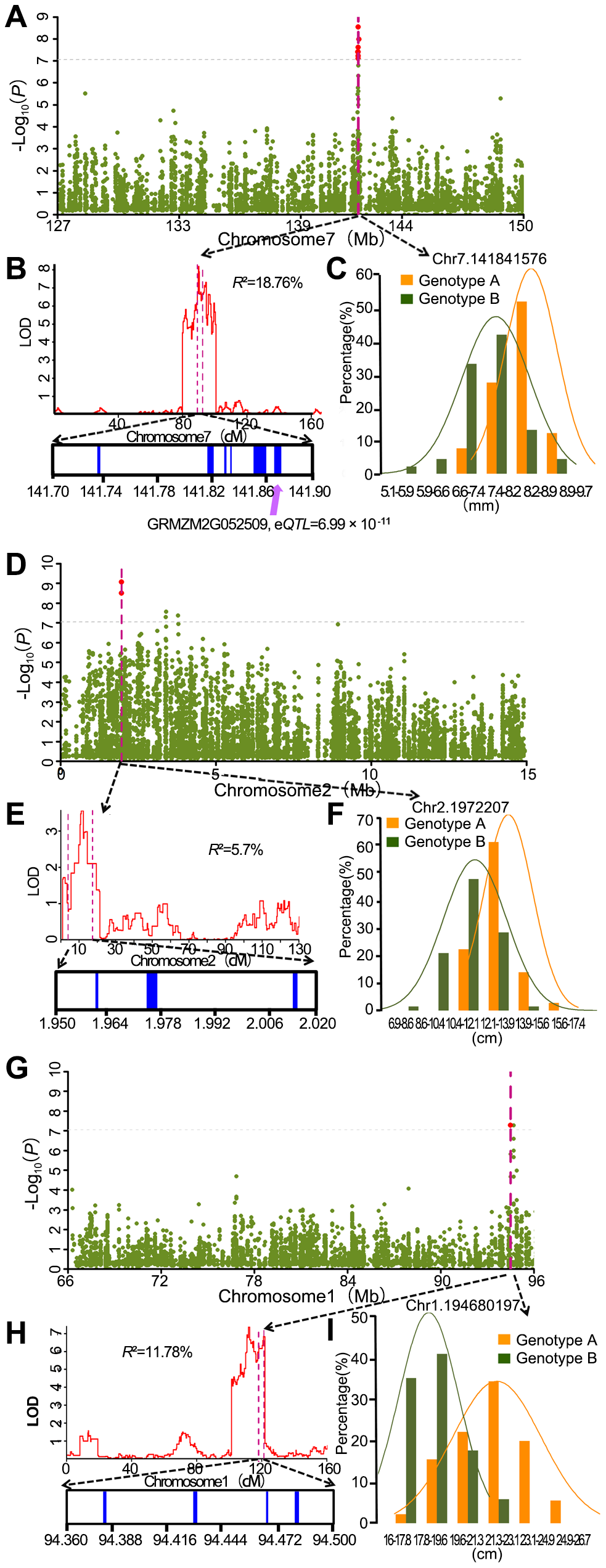 Co-localization of association peaks, QTL and well-annotated candidate genes.