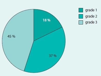 Rozdělení diagnostikovaných karcinomů podle grade (N = 1 338)