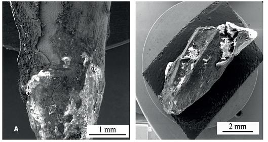 Stav kořenového čepu (a) a kořene (b) po expozici 17 let