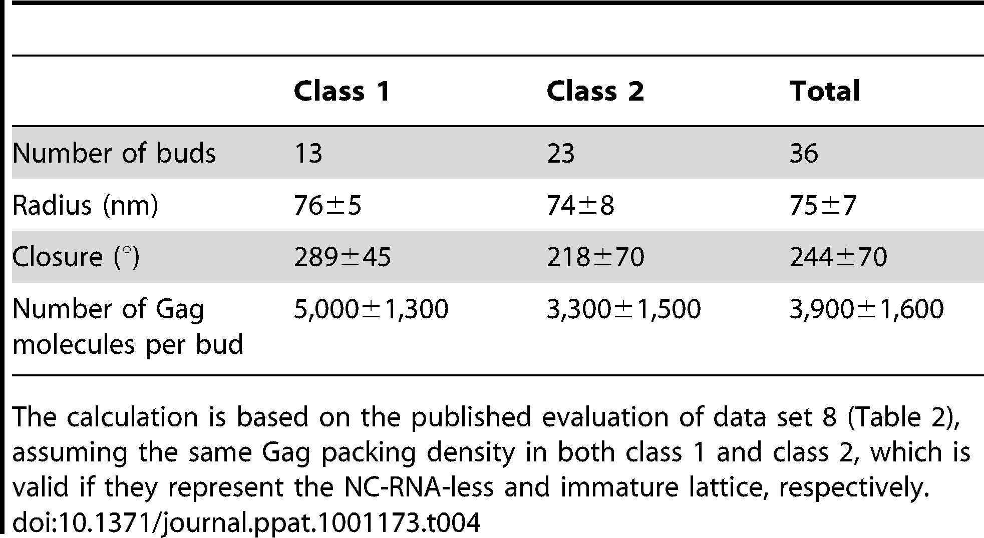 Properties of budding sites on MT4 cells according to Gag layer class.