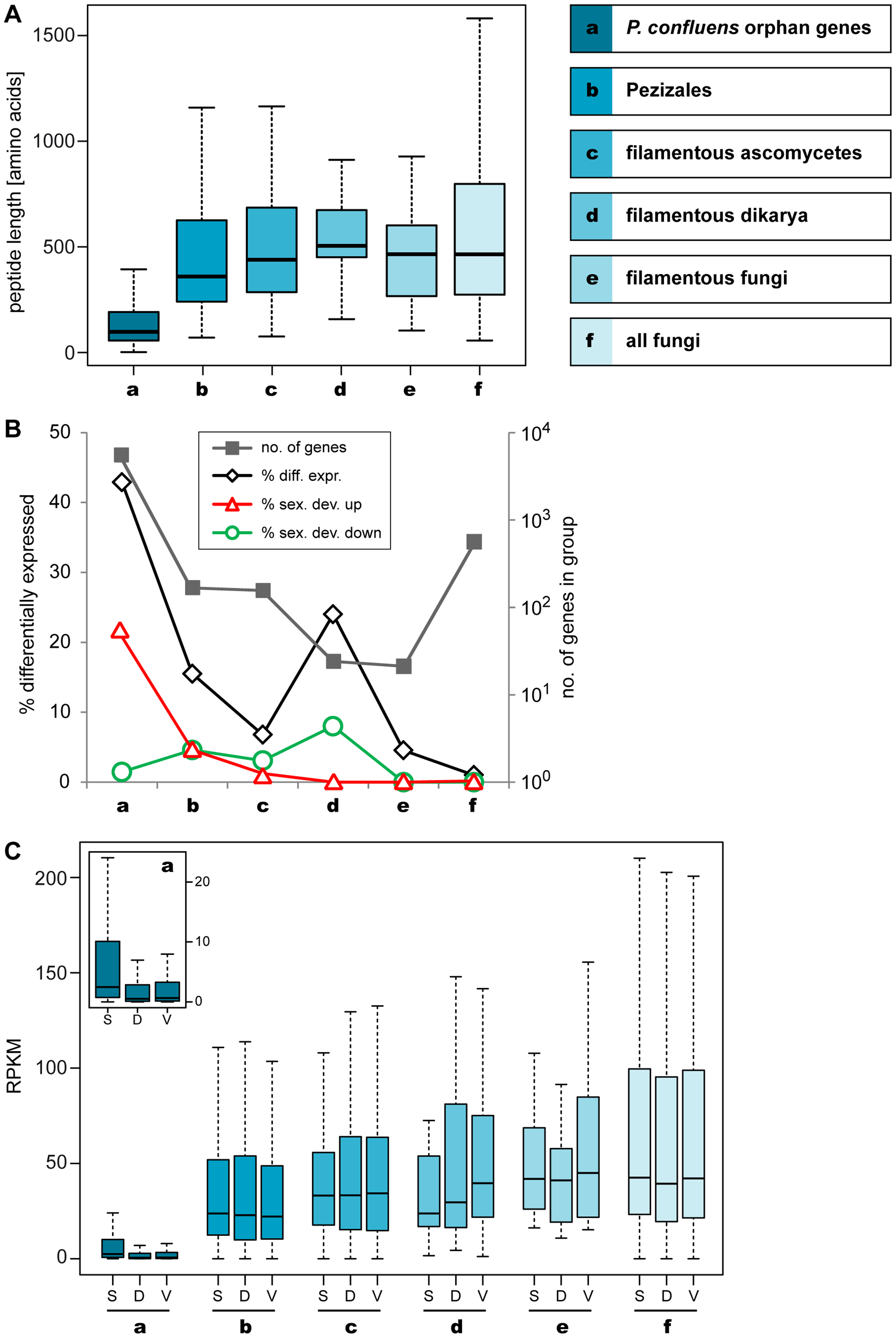 Lineage-specific peptide lengths and gene expression.