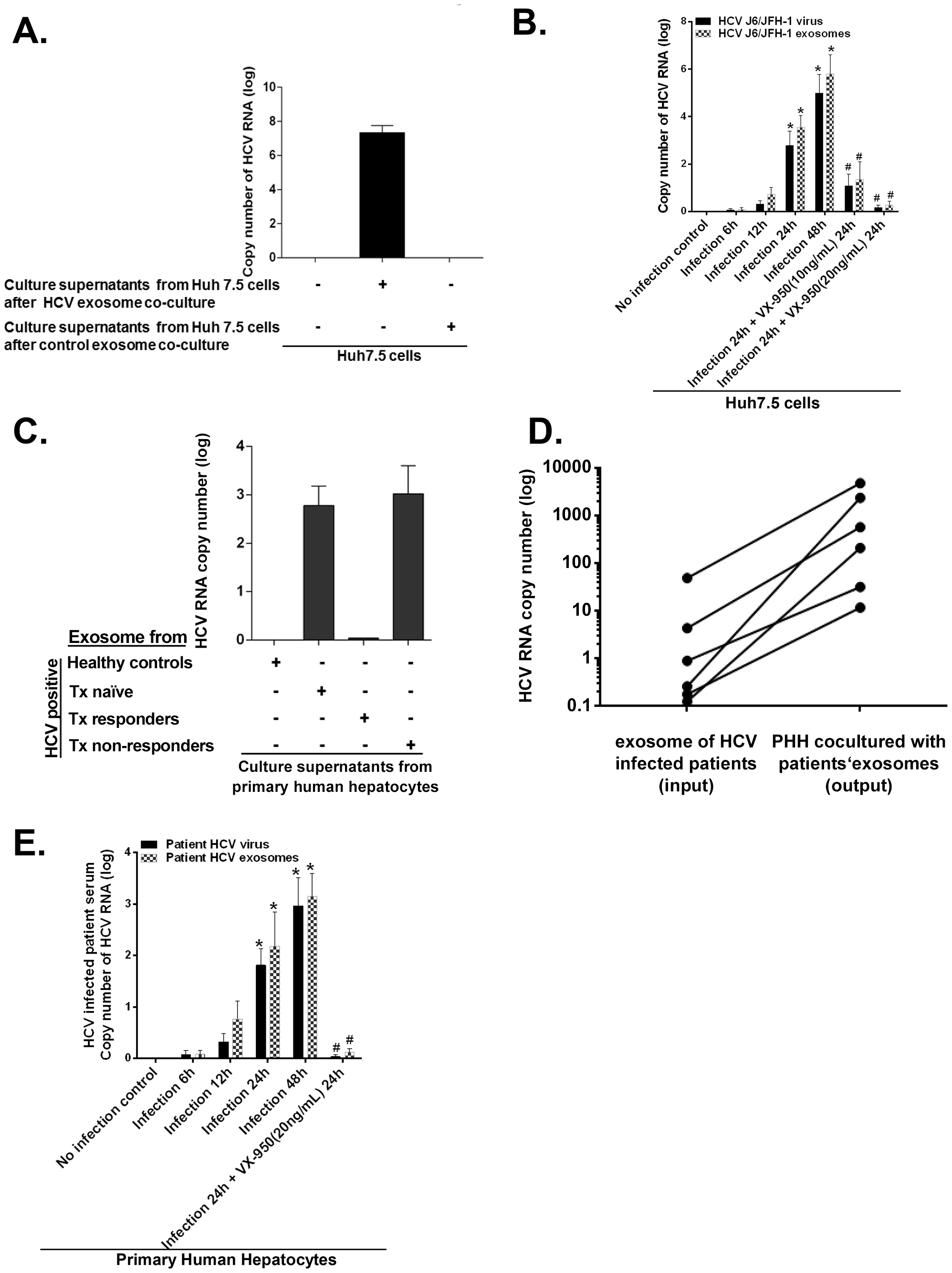 Exosomes from HCV J6/JFH-1 infected Huh7.5 cells transmit HCV infection to the human hepatoma cell line (Huh7.5 cells) and exosomes from HCV infected patients' serum transmit HCV infection to primary human hepatocytes.