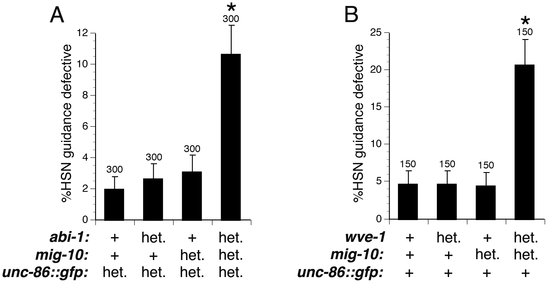 Dosage-sensitive genetic interactions indicate that MIG-10, ABI-1, and WVE-1 function together to mediate axon guidance.