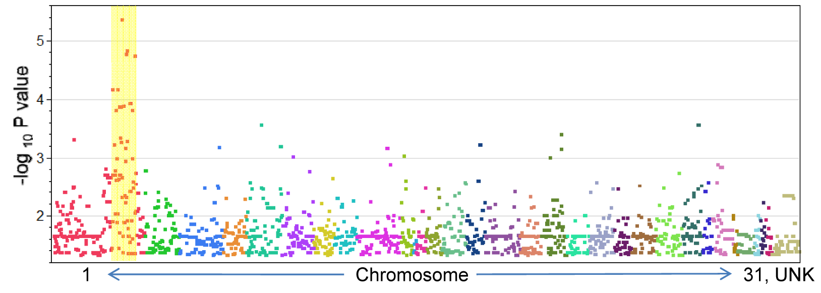 P-values (<0.05) for SNP association with Lavender Foal Syndrome.