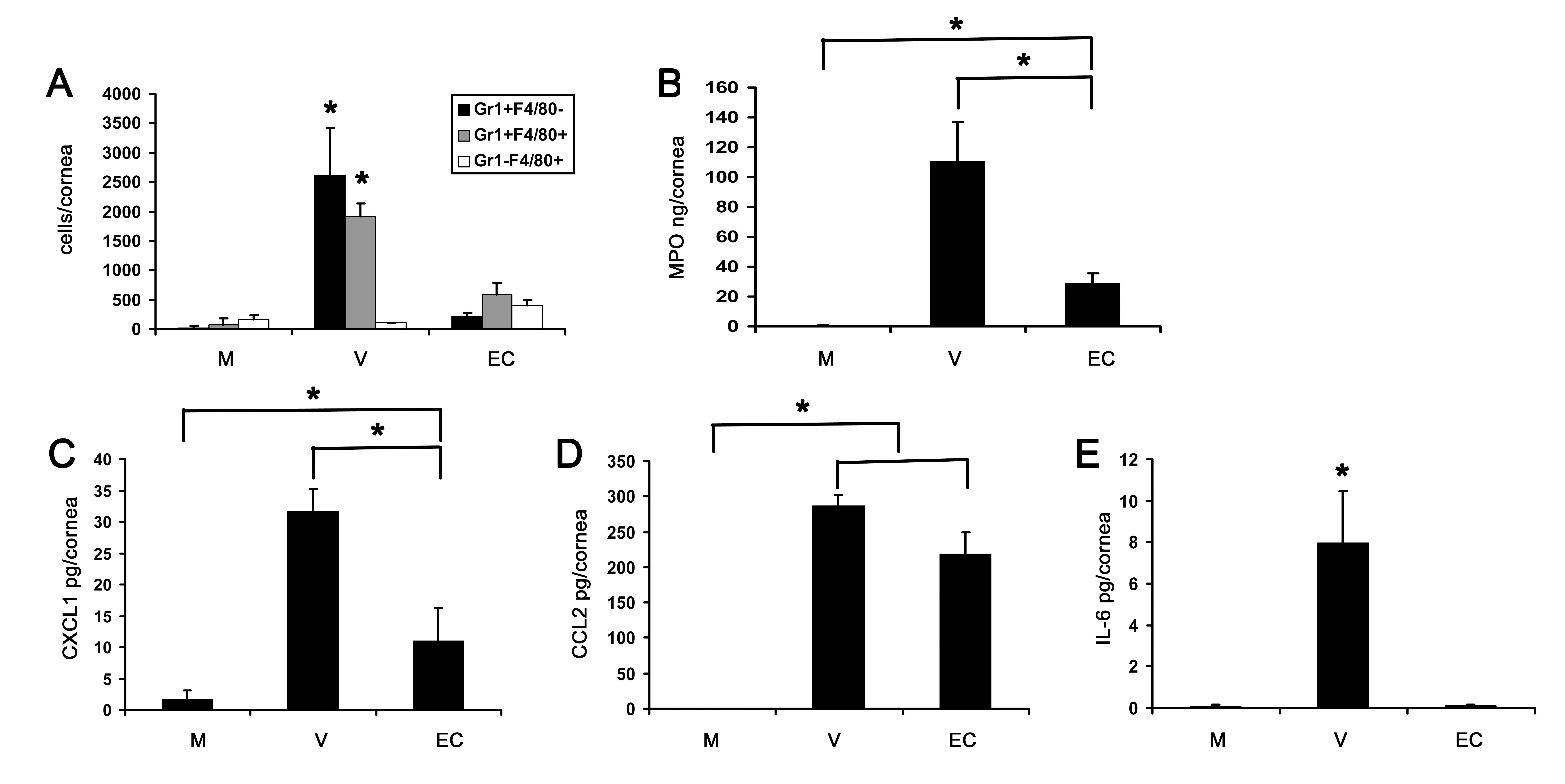 Empty viral capsid induces chemokine expression and infiltration of leukocytes into the cornea.