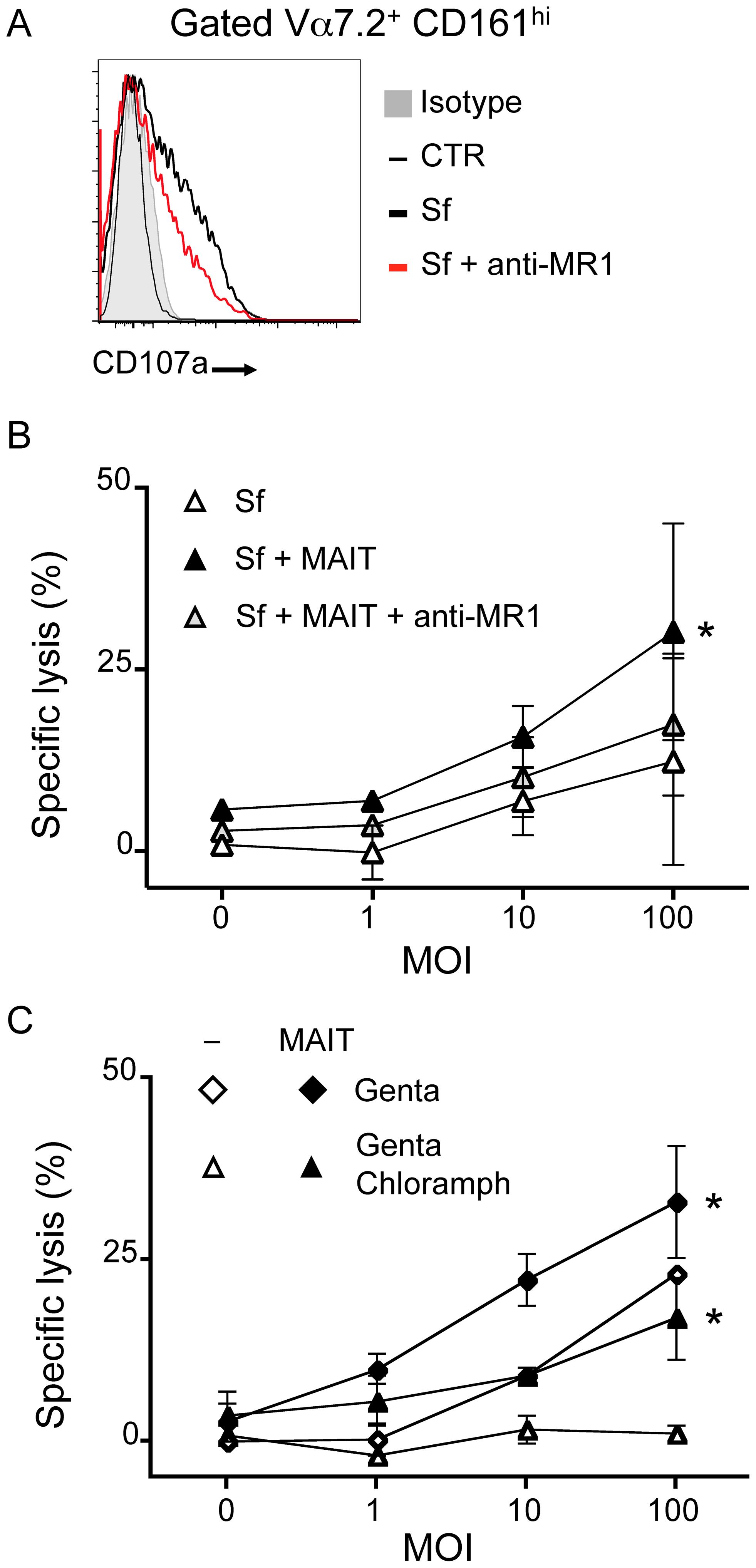 MAIT cells lyse <i>Shigella flexneri</i>-infected epithelial cells.