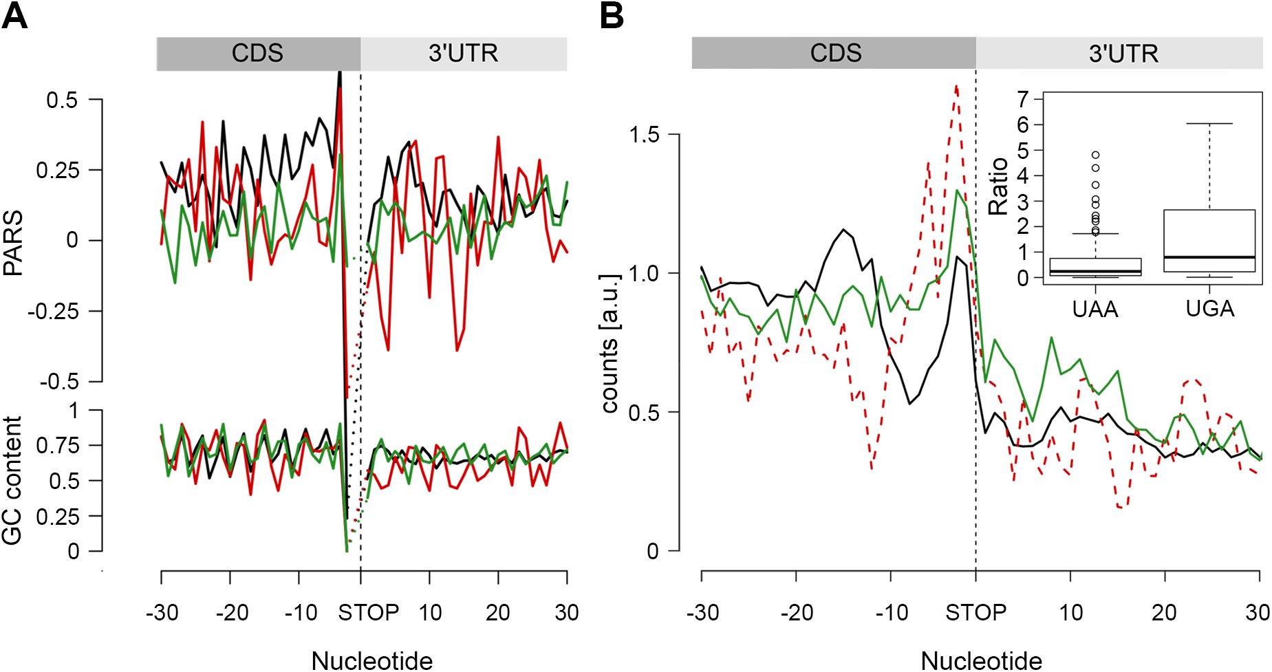 The stop codon of operon genes is more structured than non-operon genes.