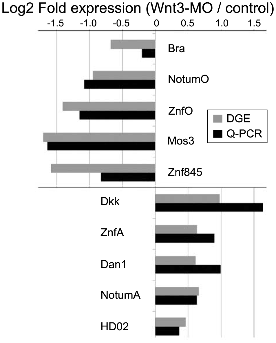 Equivalent differential expression responses determined by DGE and Q-PCR.