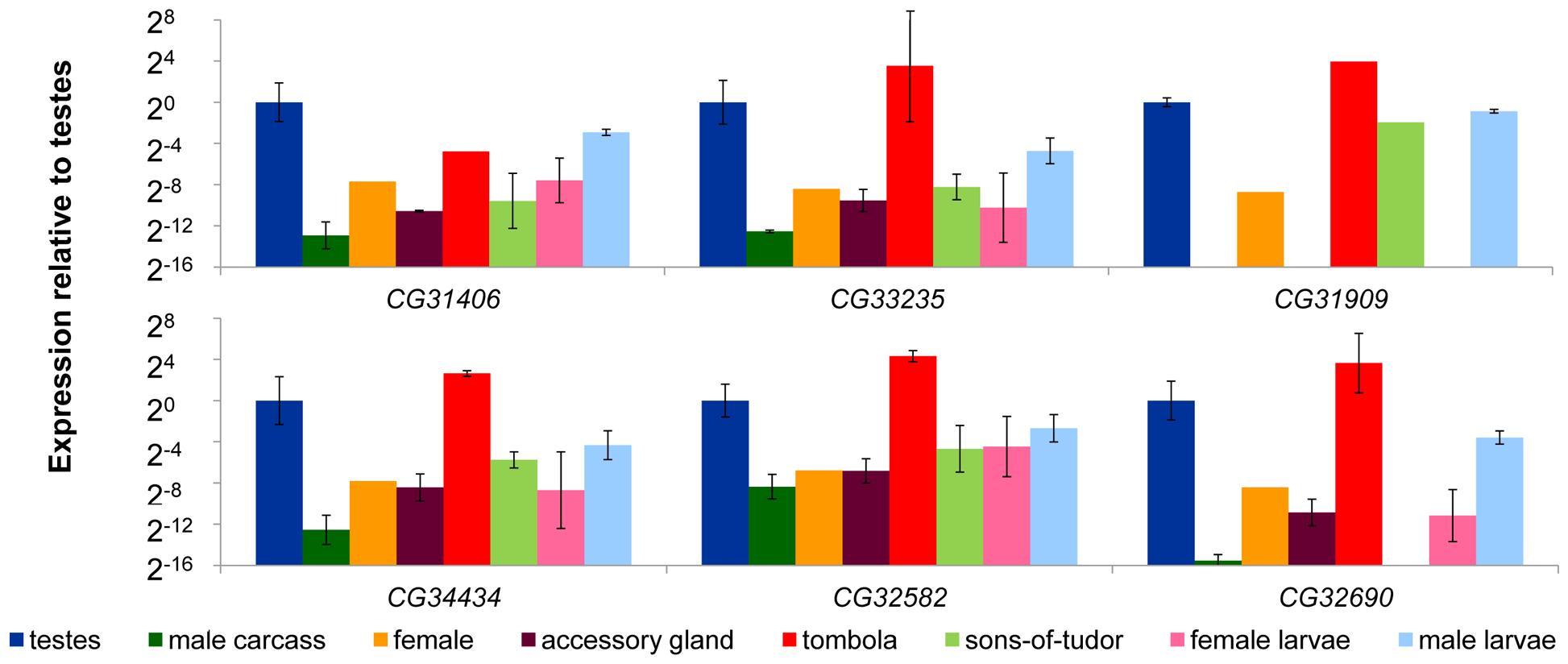 <i>De novo</i> genes exhibit male-biased and germline-dependent expression.