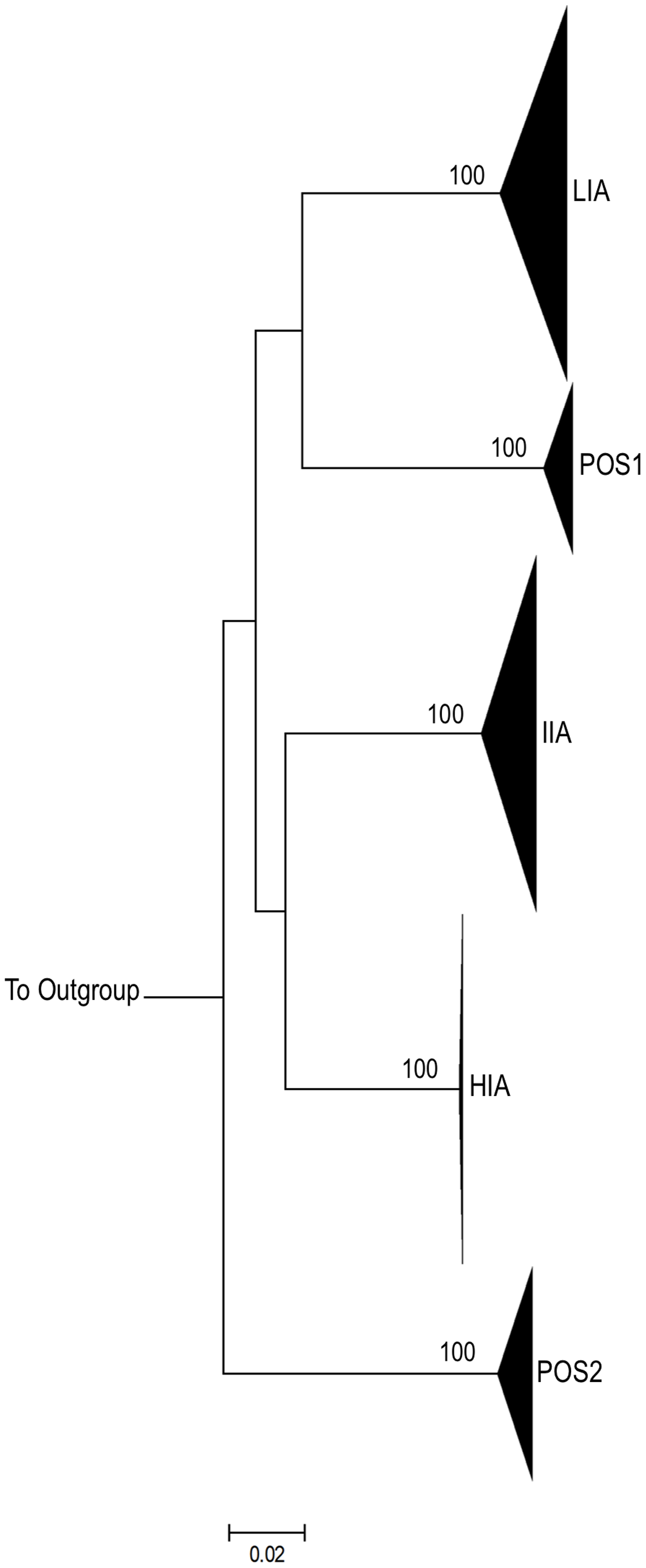 Intra-Patient clustering of HIV-1 <i>env</i> quasi-species.