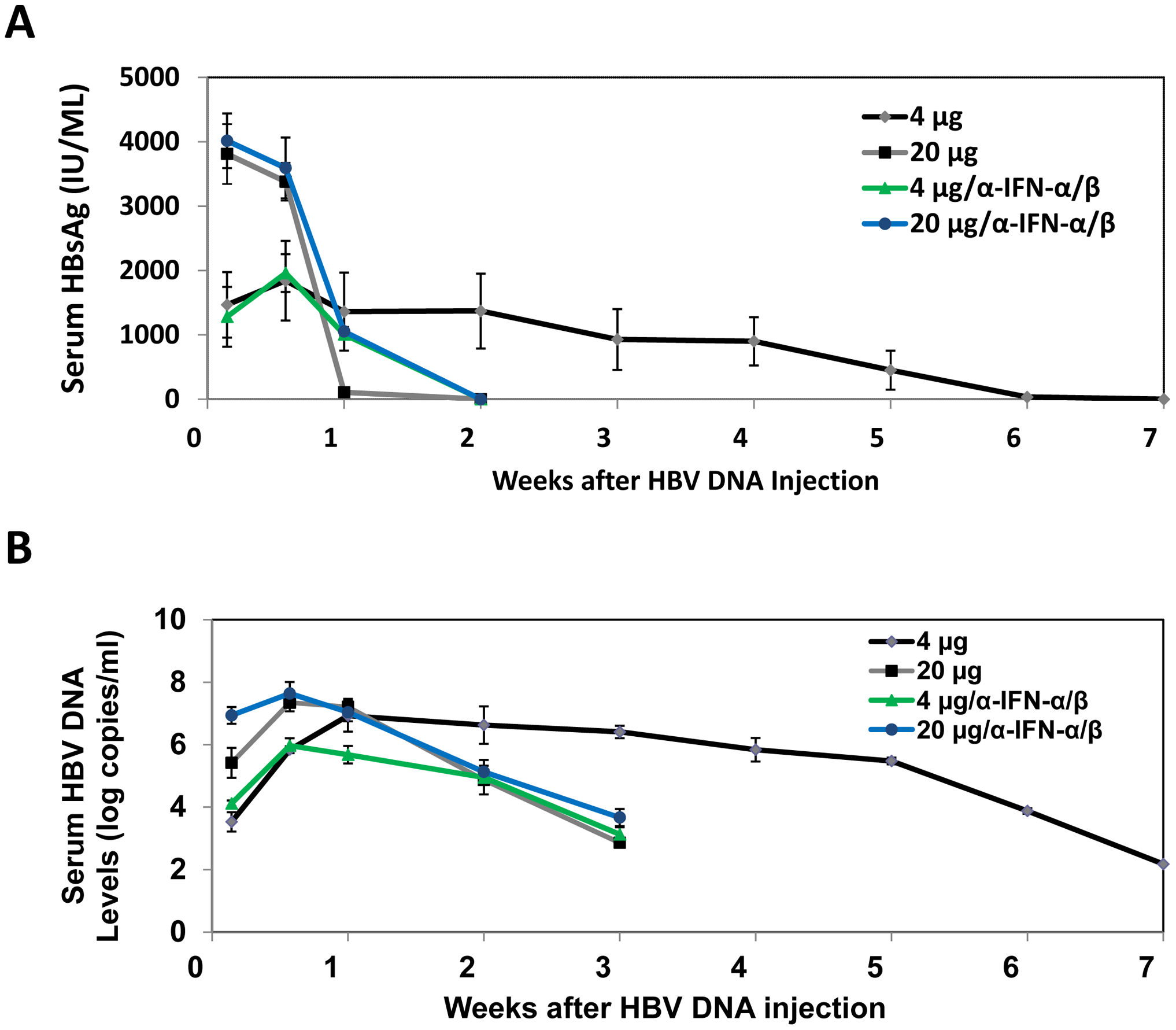 Analysis of HBV replication in mice.