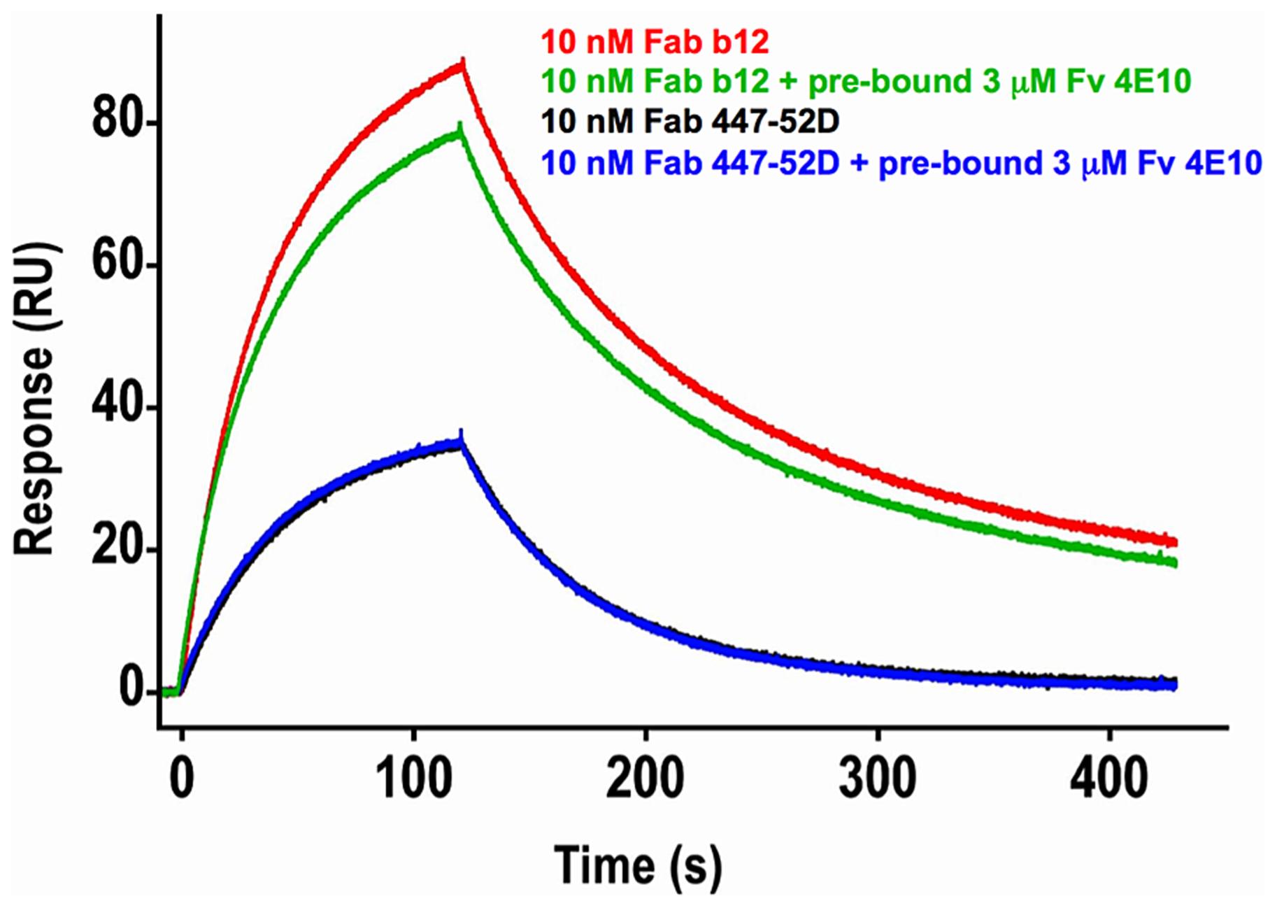 Effects of 4E10/gp140<sub>3</sub> pre-binding on 447-52D and b12 binding.