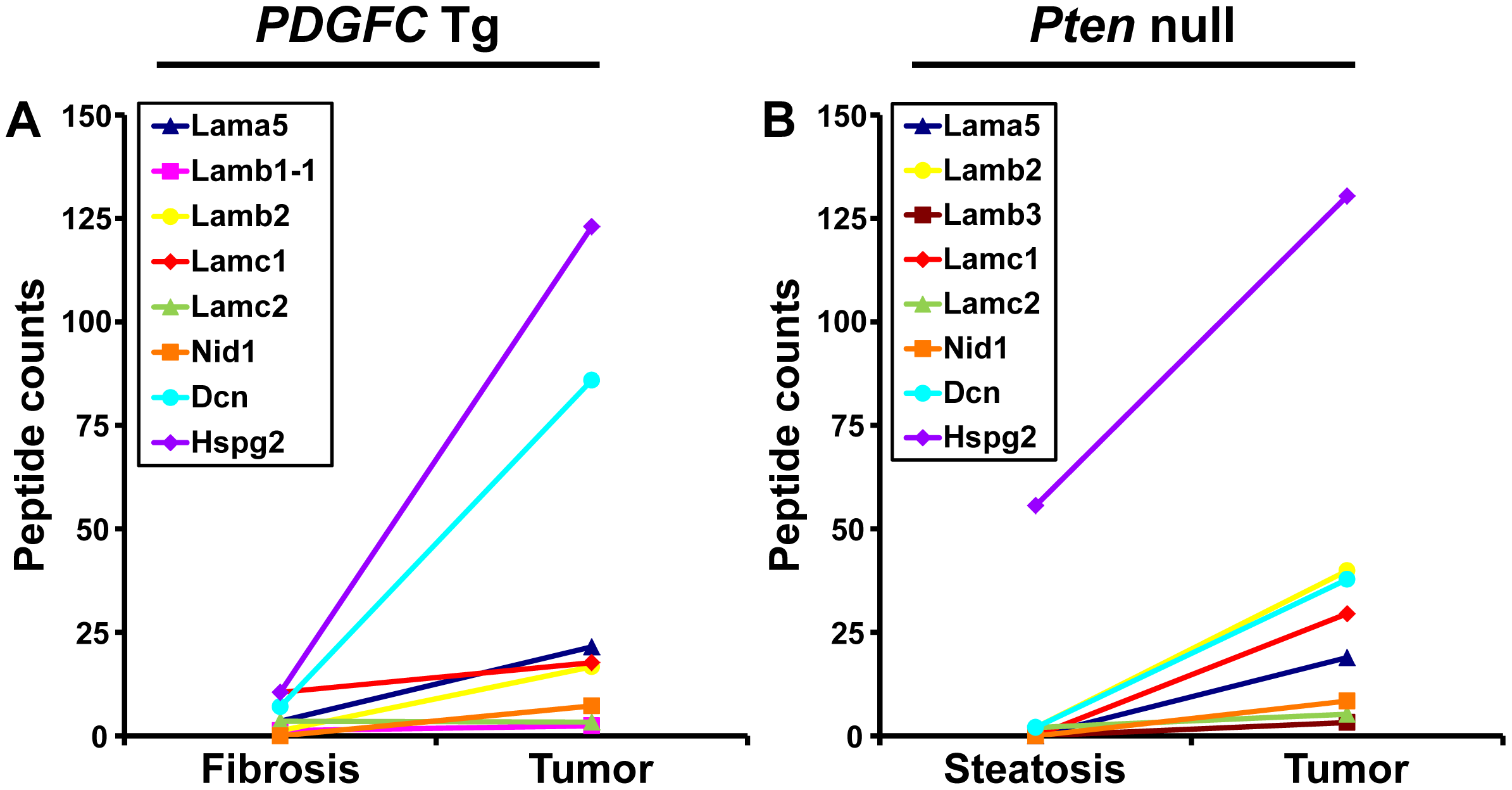 Non-collagenous ECM proteins up-regulated in <i>PDGFC</i> Tg and <i>Pten</i> null tumors.