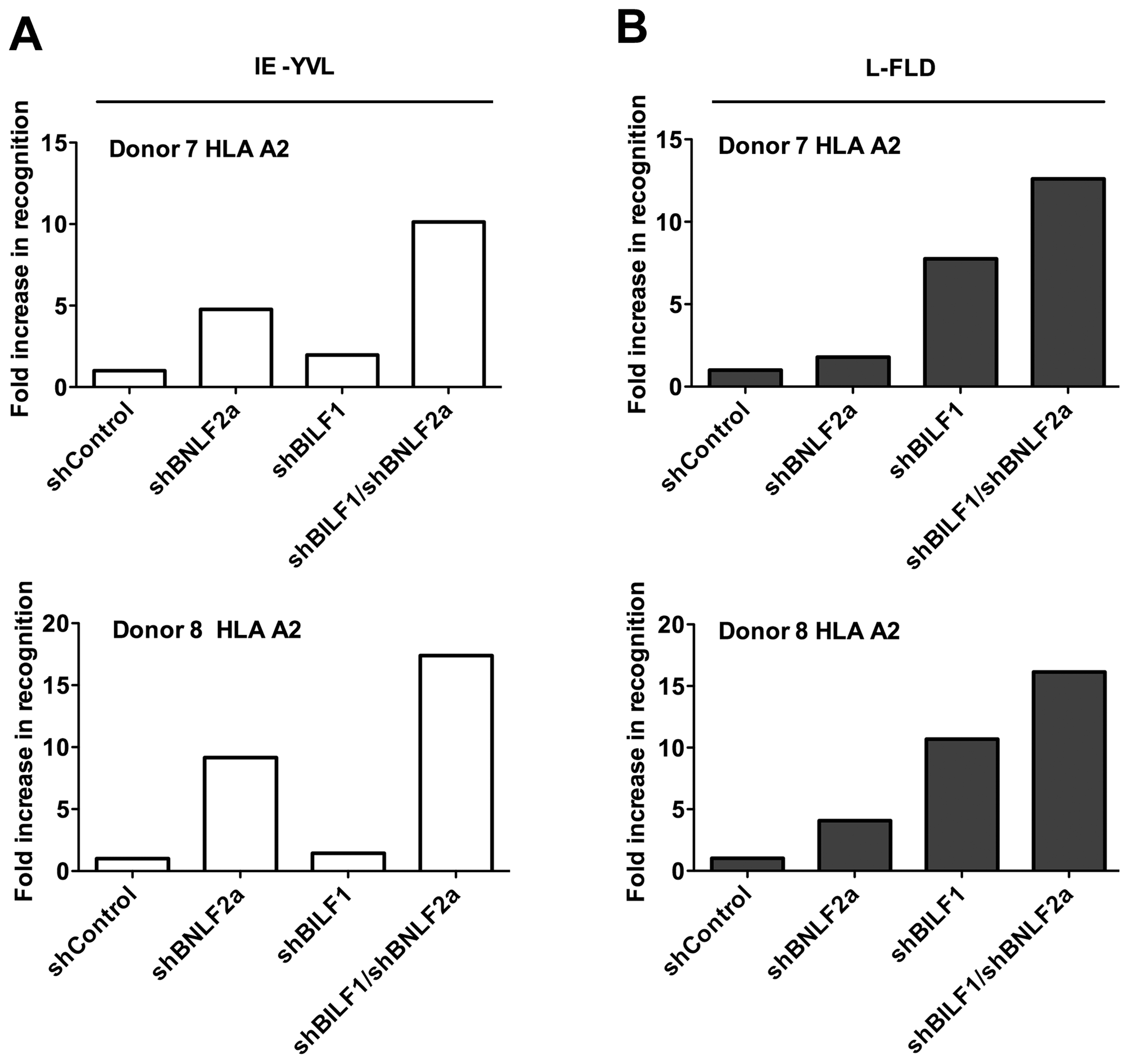 Relative recognition by IE- and L- specific, HLA-A2 restricted CD8<sup>+</sup> T cell clones of LCLs lacking both BNLF2a and BILF1 expression.