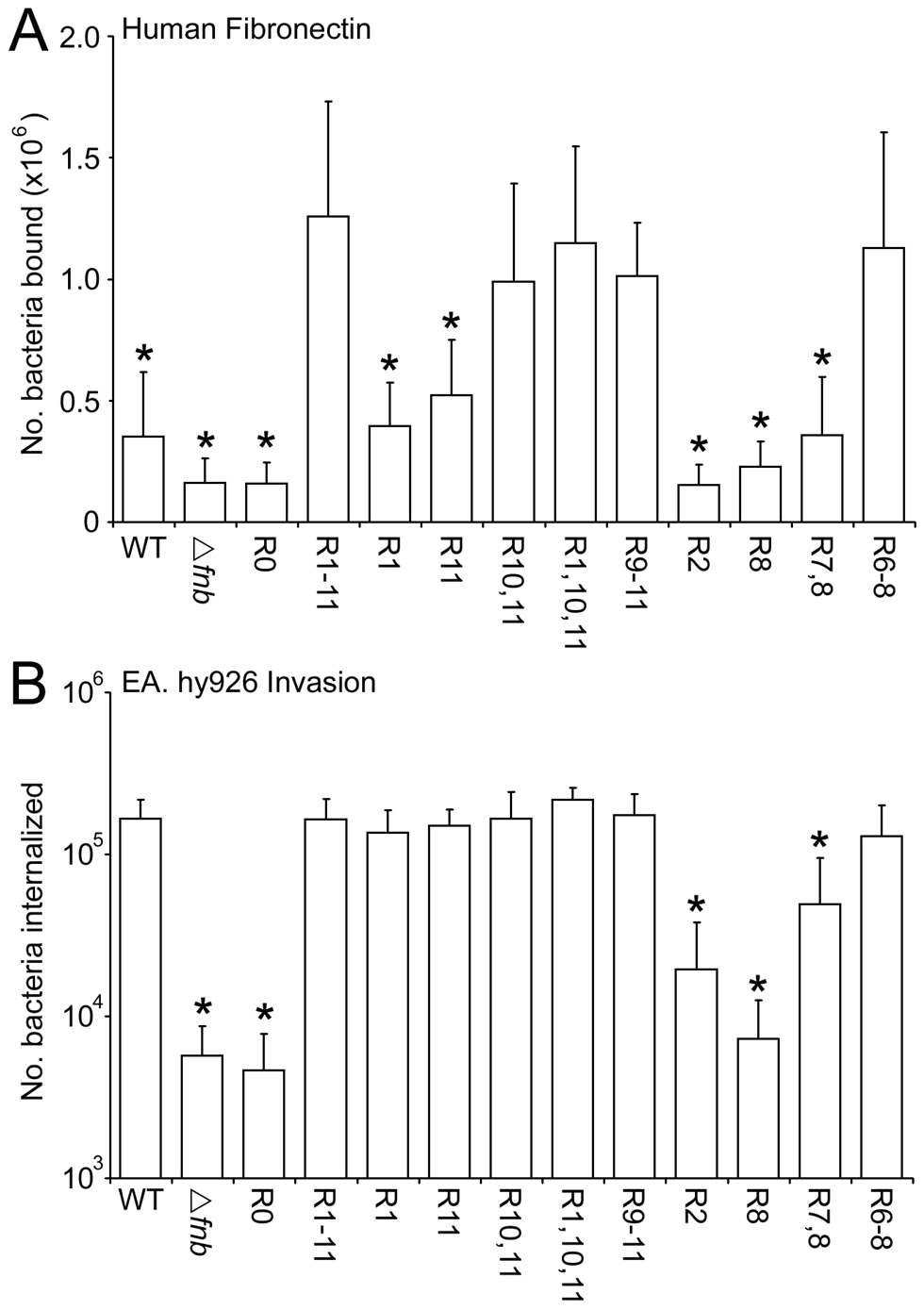 Composition of the Fn-binding repeat region significantly affects adhesion and internalization of <i>S. aureus</i> 8325.4.
