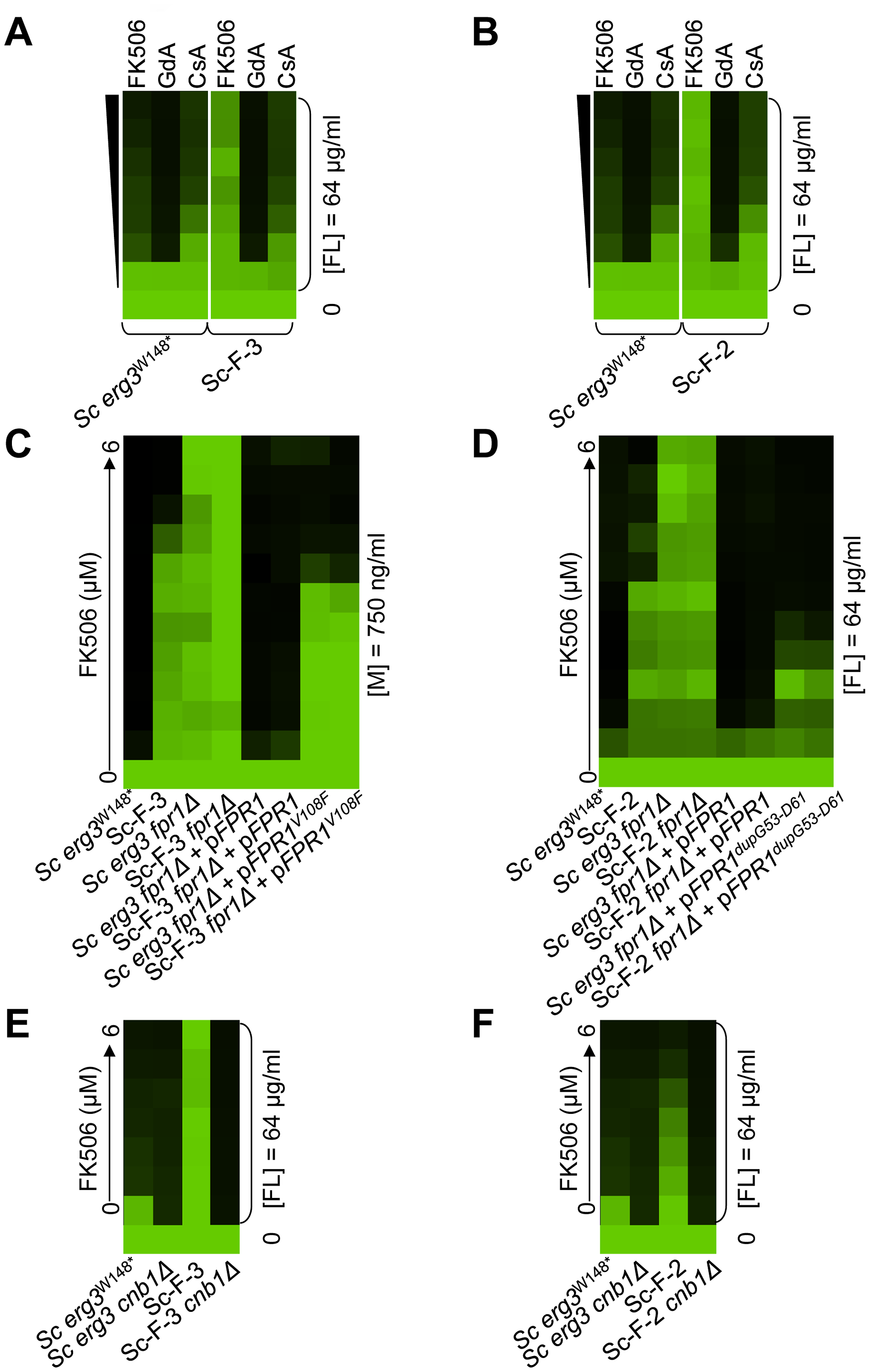 Mutations in <i>FPR1</i> confer resistance to azole and FK506 in two <i>S. cerevisiae</i> lineages.