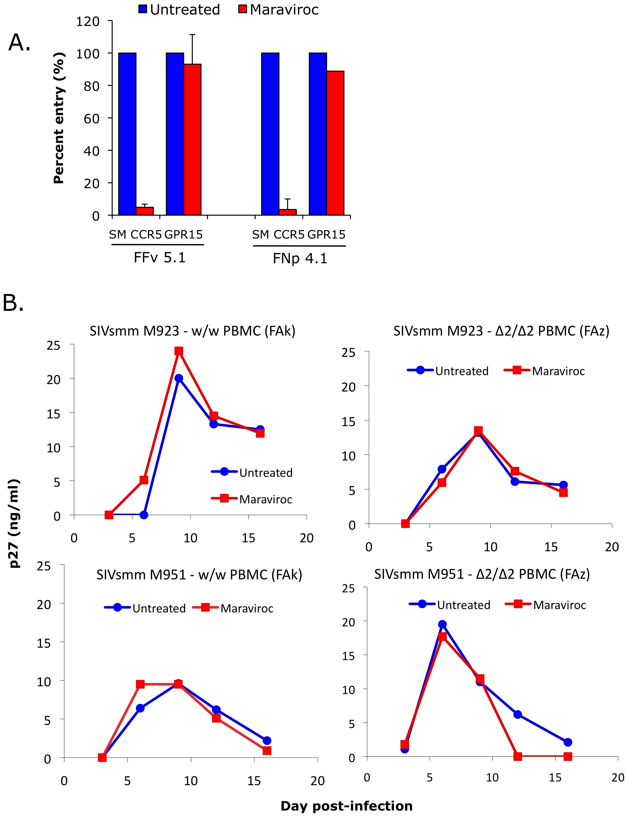Effect of CCR5 blocking on SIVsmm use of CCR5 and entry into primary SM PBMC.